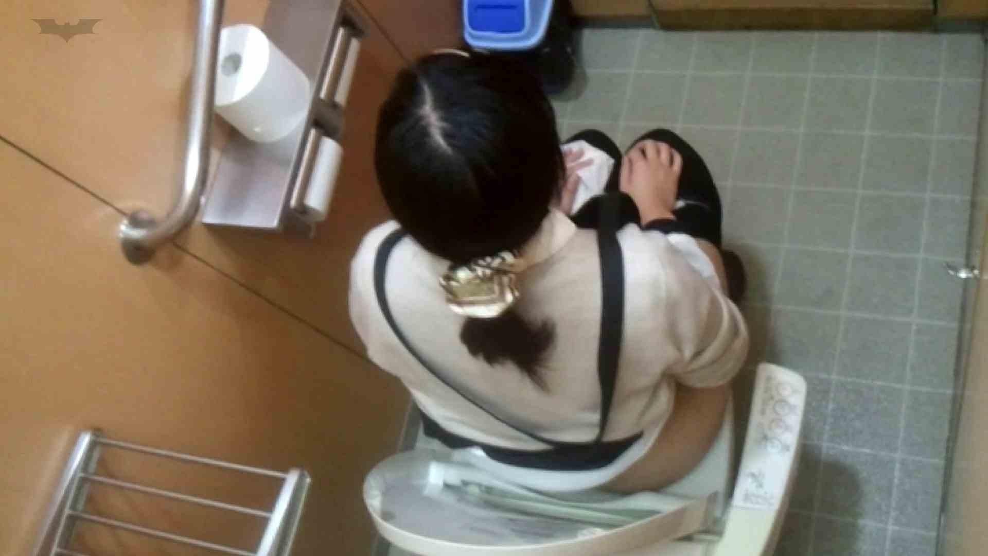 化粧室絵巻 商い場編 VOL.25 お姉さんのSEX おまんこ動画流出 101枚 68