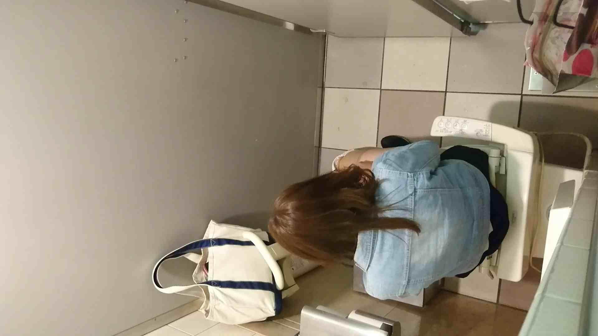 化粧室絵巻 ショッピングモール編 VOL.17 むっちりガール  104枚 16