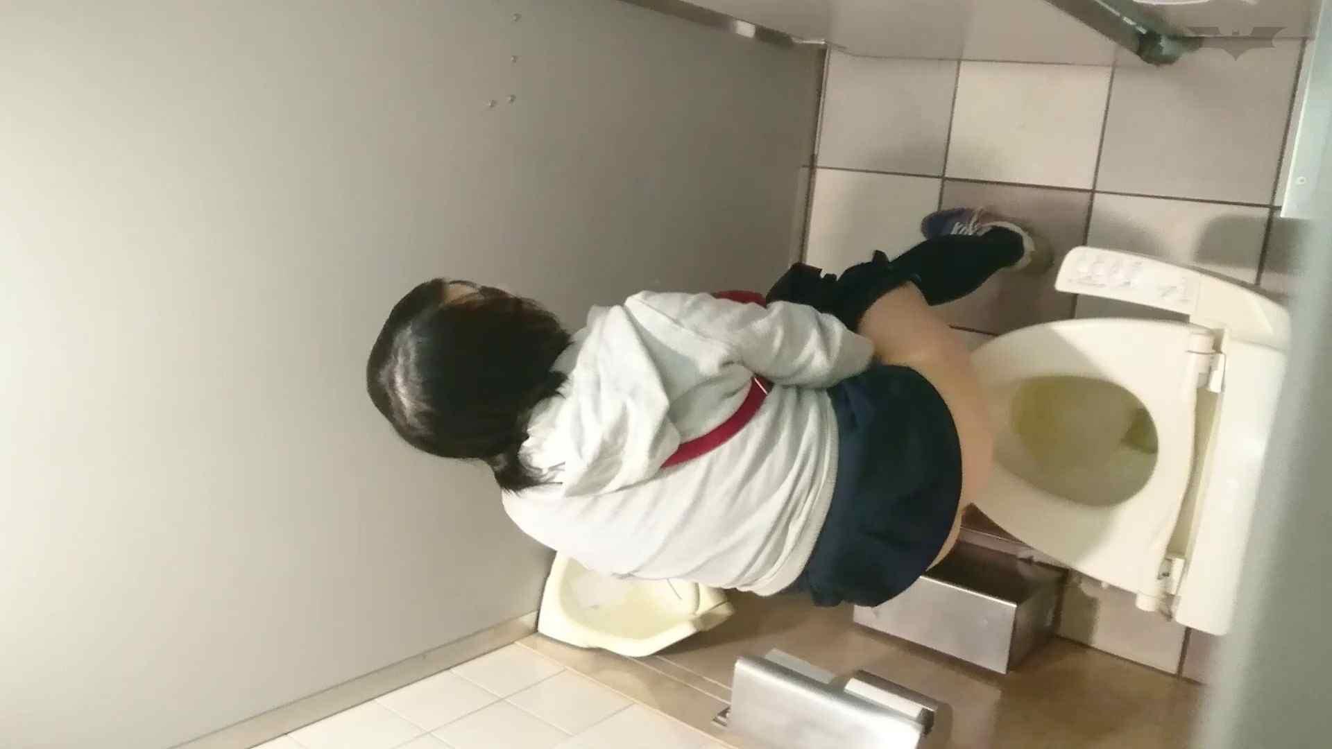 化粧室絵巻 ショッピングモール編 VOL.17 細身体型 すけべAV動画紹介 104枚 61