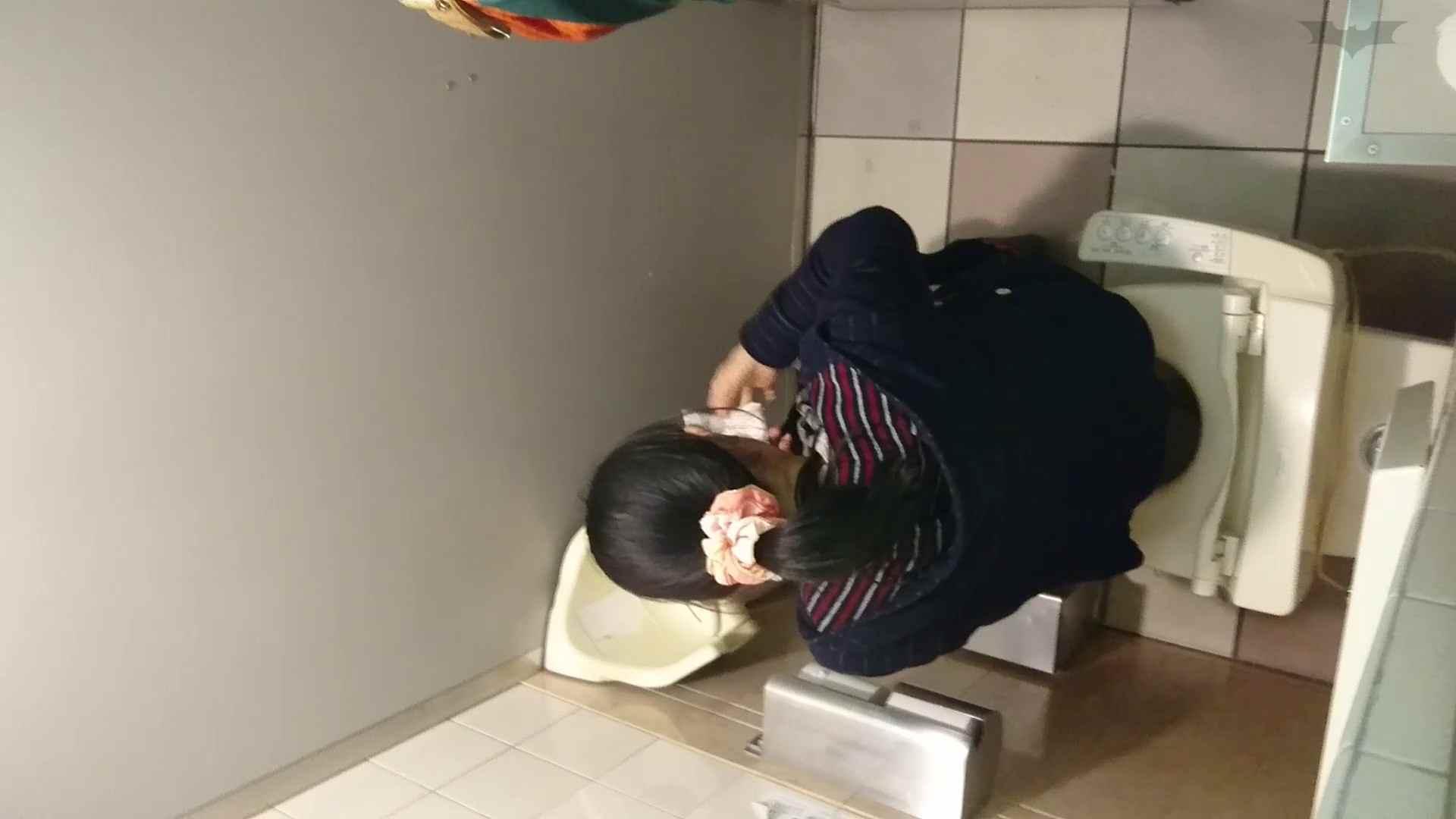 化粧室絵巻 ショッピングモール編 VOL.18 むっちりガール 性交動画流出 108枚 44