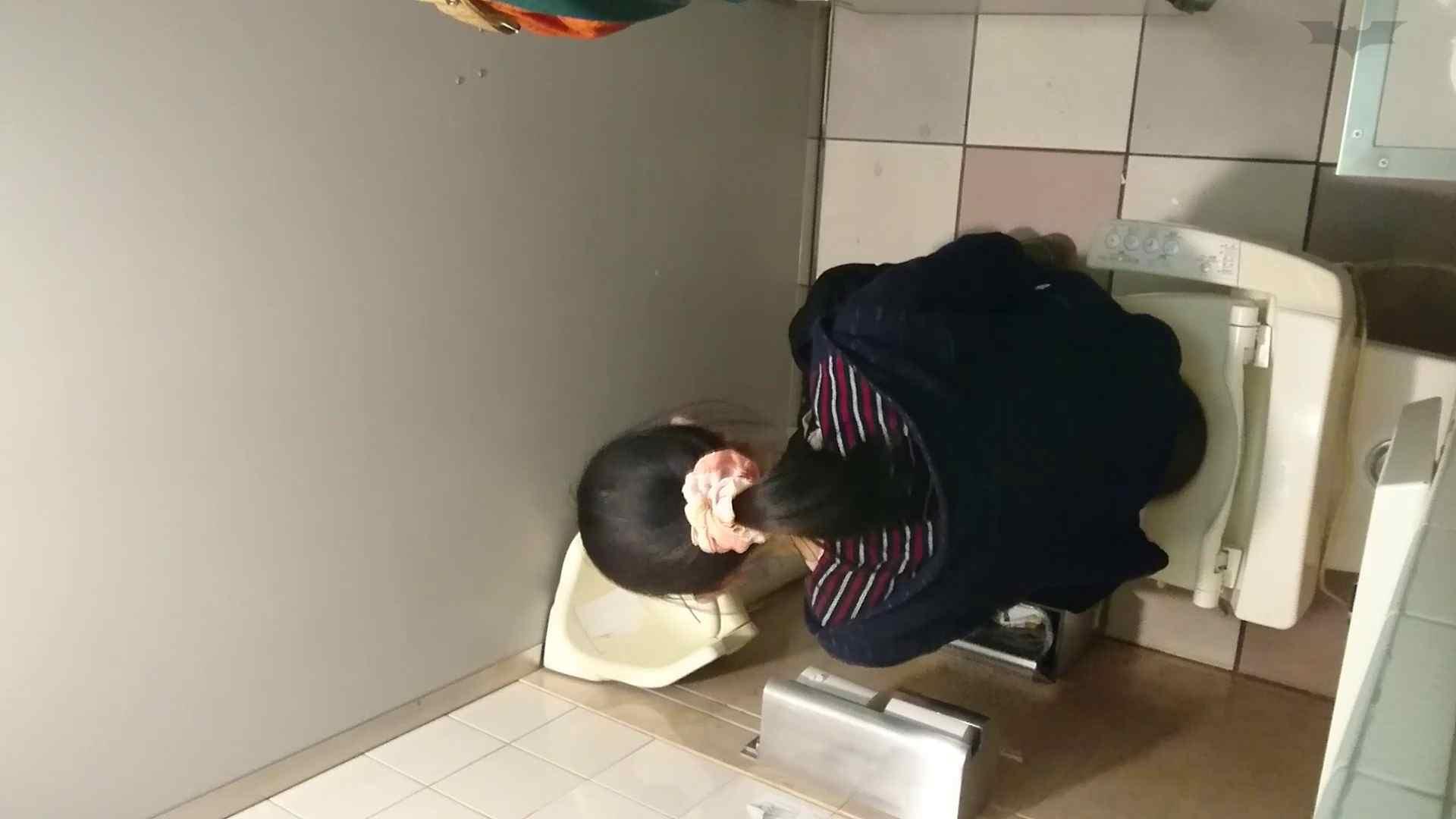 化粧室絵巻 ショッピングモール編 VOL.18 洗面所のぞき | 高評価  108枚 46