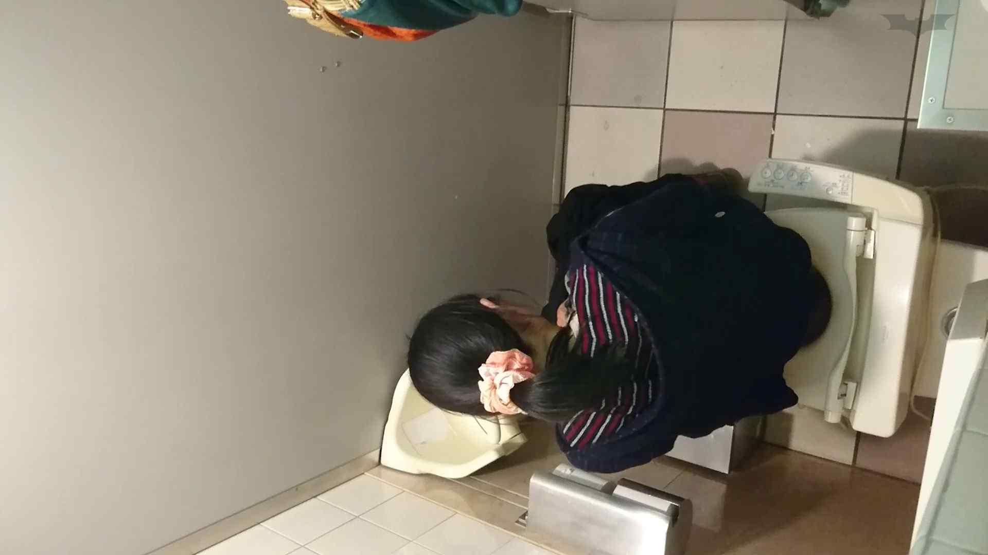 化粧室絵巻 ショッピングモール編 VOL.18 ギャル達 おまんこ動画流出 108枚 47