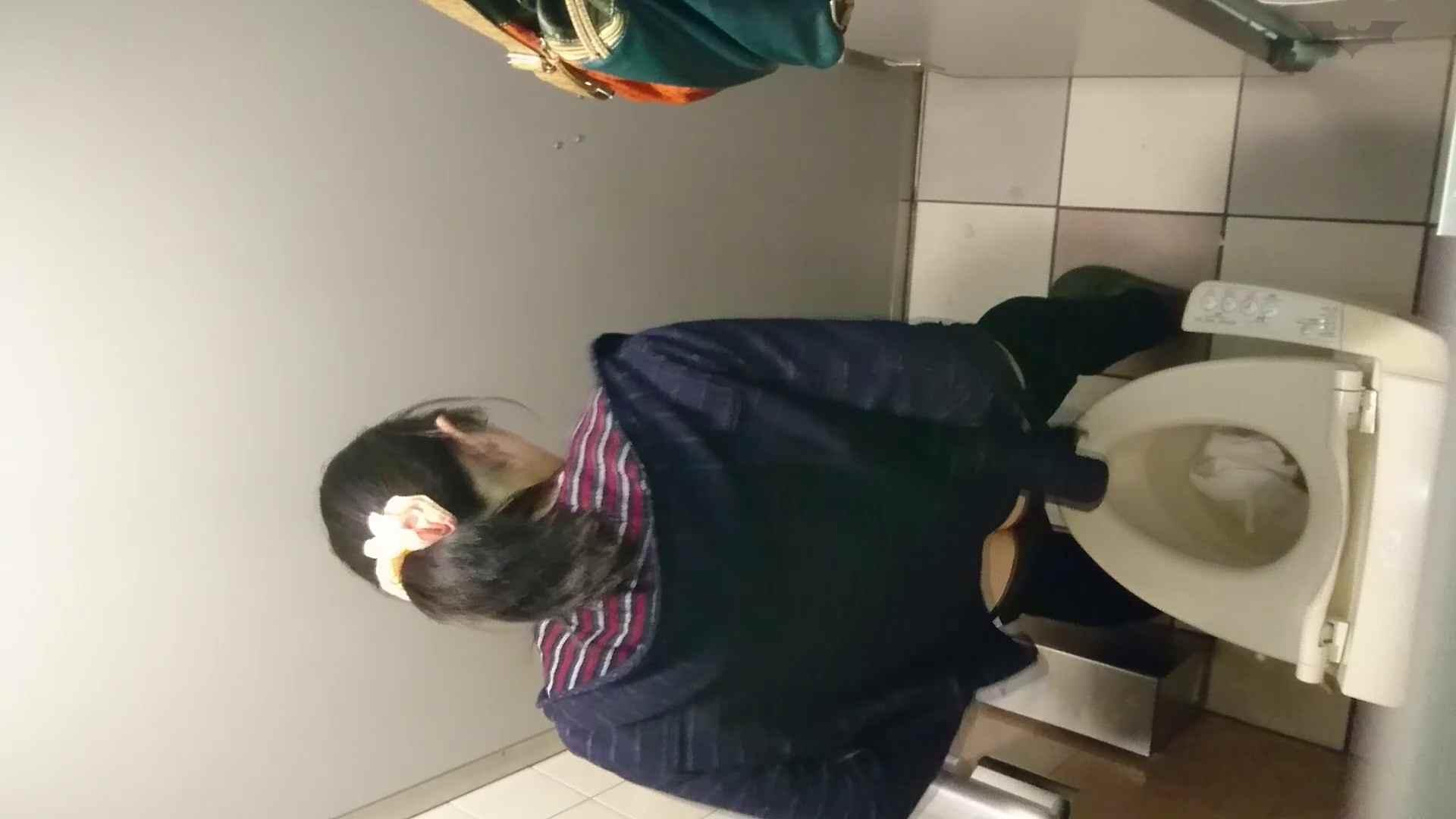 化粧室絵巻 ショッピングモール編 VOL.18 洗面所のぞき  108枚 54