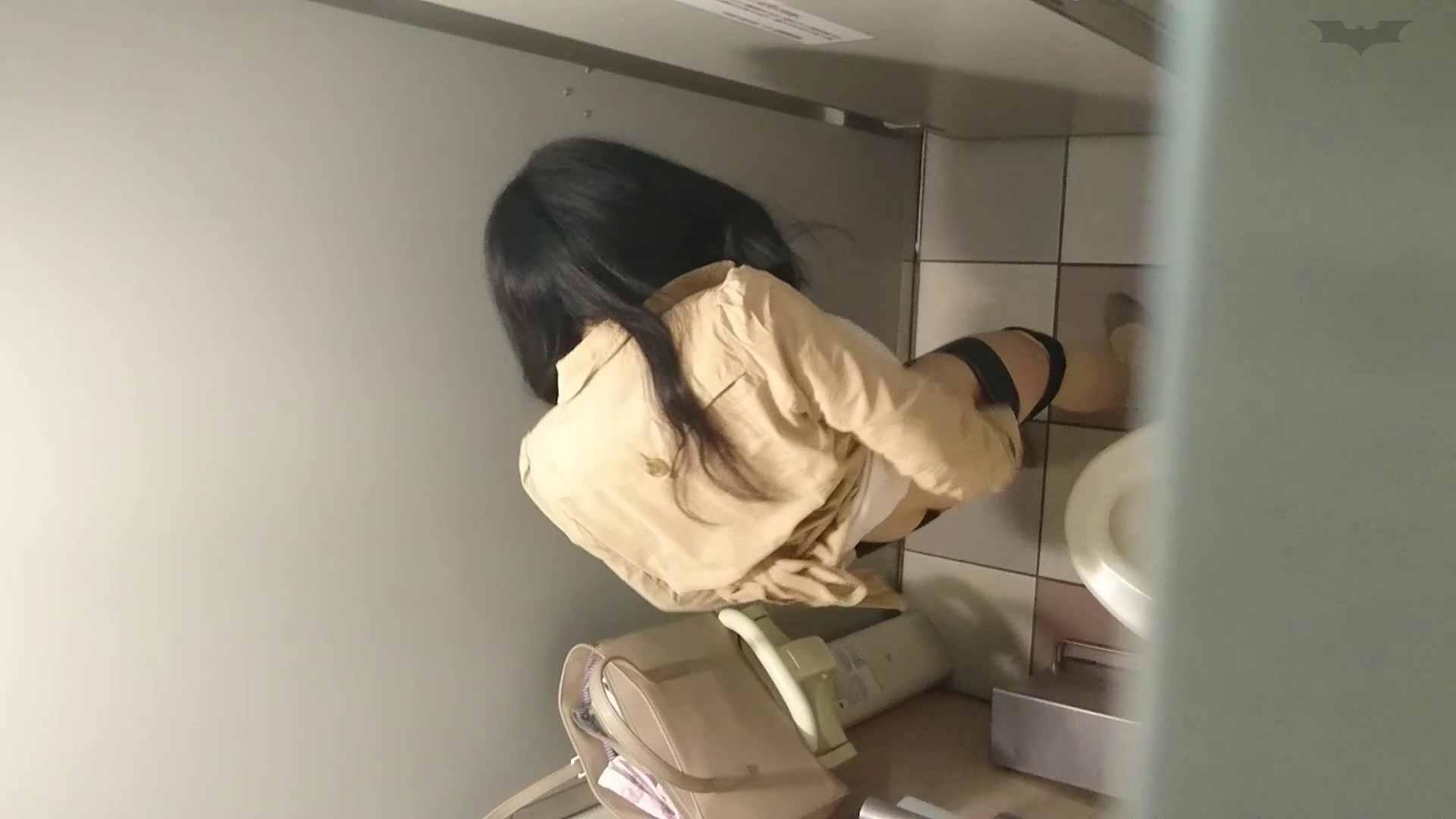 化粧室絵巻 ショッピングモール編 VOL.19 盛合せ スケベ動画紹介 78枚 26