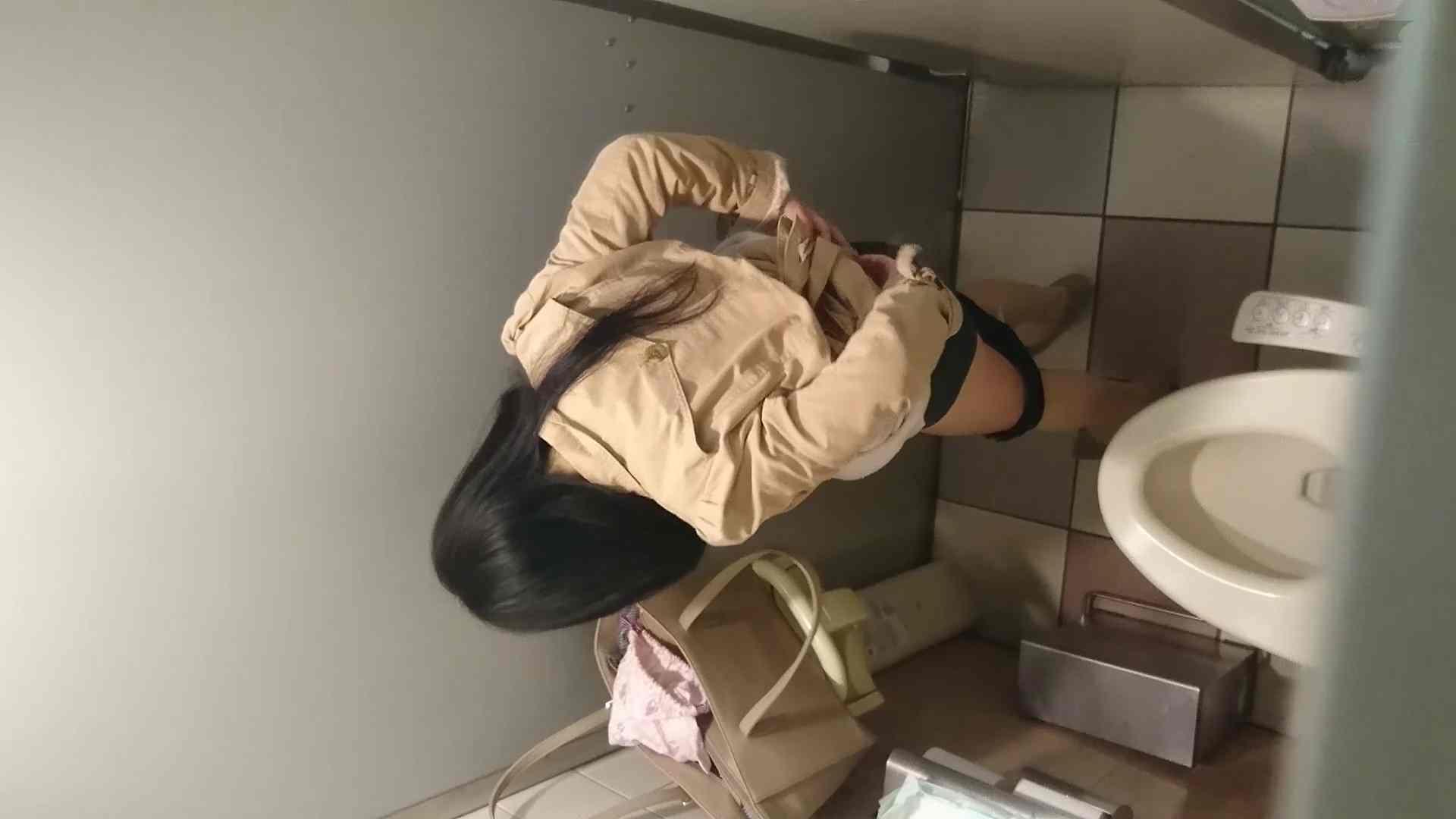 化粧室絵巻 ショッピングモール編 VOL.19 高画質 セックス無修正動画無料 78枚 30