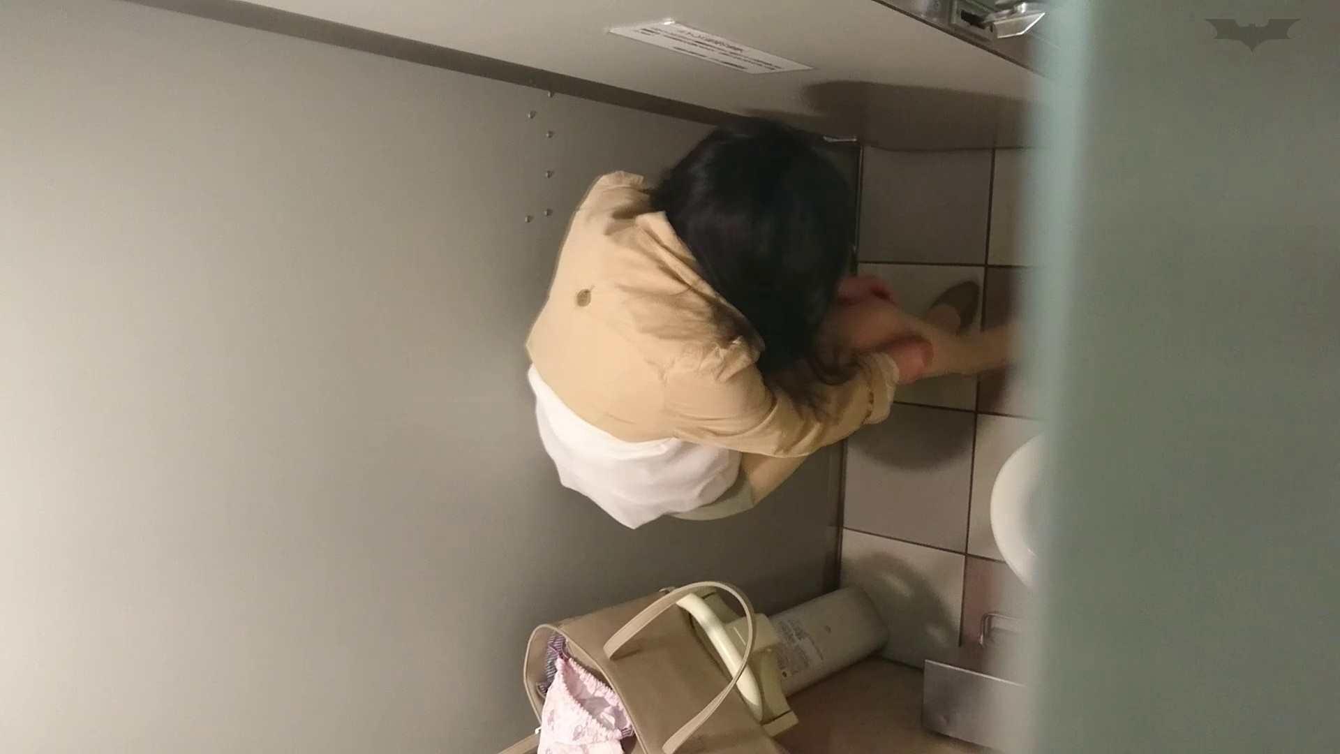 化粧室絵巻 ショッピングモール編 VOL.19 高評価 アダルト動画キャプチャ 78枚 47