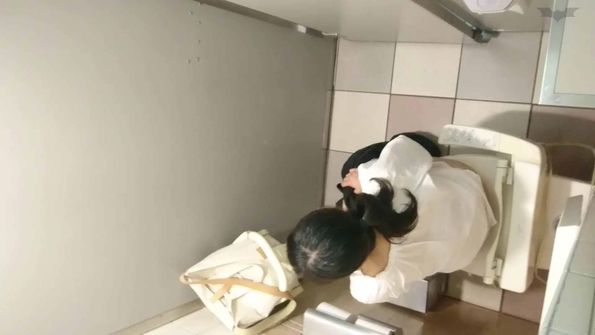 化粧室絵巻 ショッピングモール編 VOL.22 美肌 性交動画流出 111枚 3