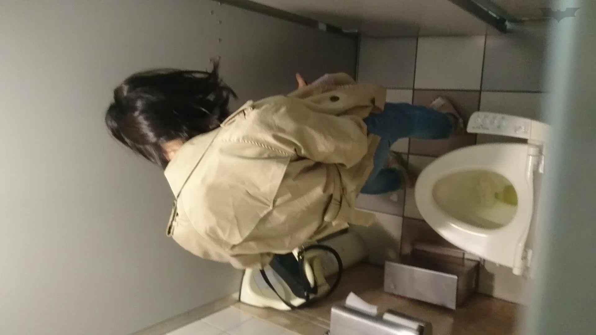 化粧室絵巻 ショッピングモール編 VOL.22 細身体型 アダルト動画キャプチャ 111枚 20