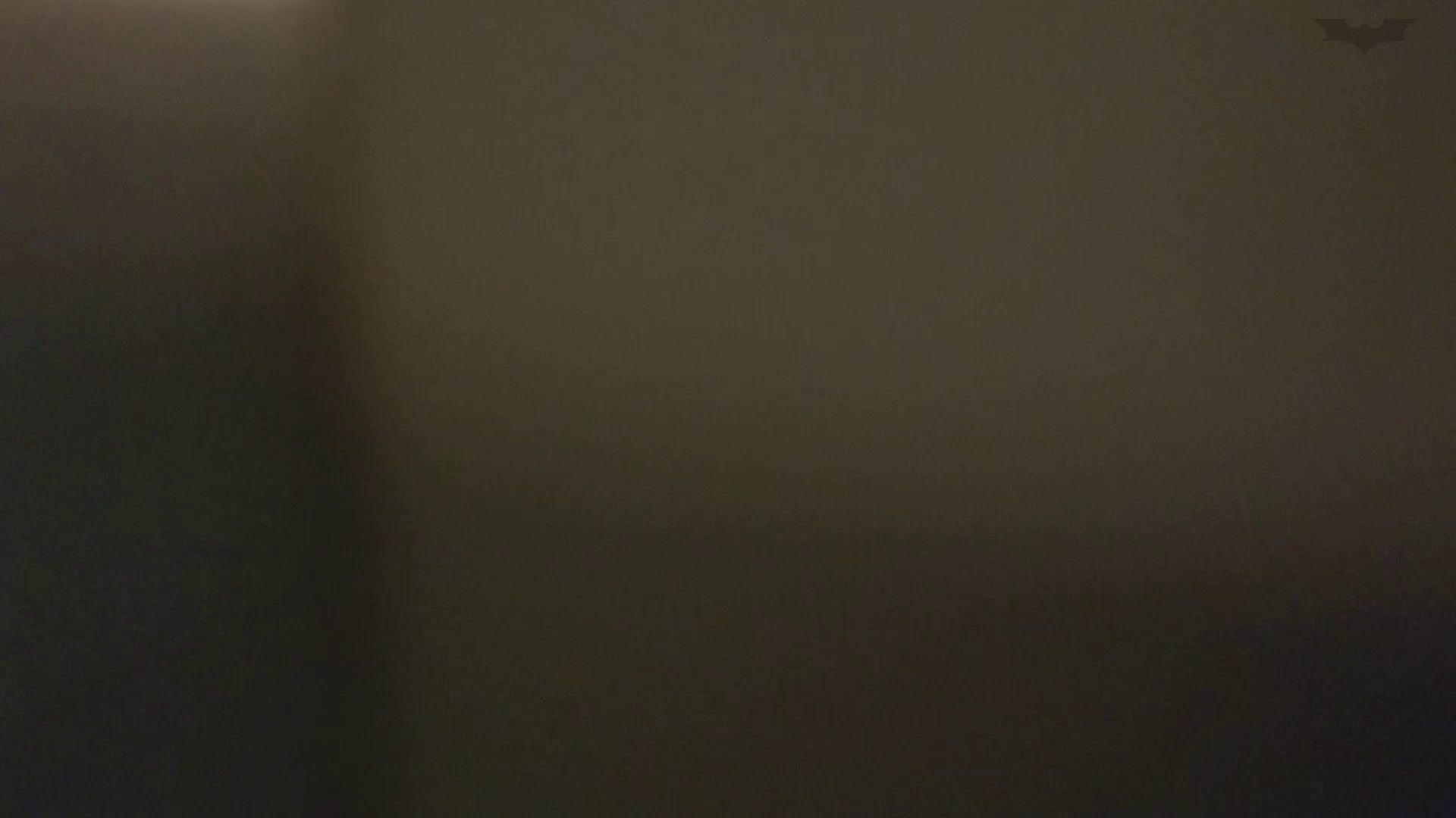 化粧室絵巻 ショッピングモール編 VOL.22 美肌 性交動画流出 111枚 75