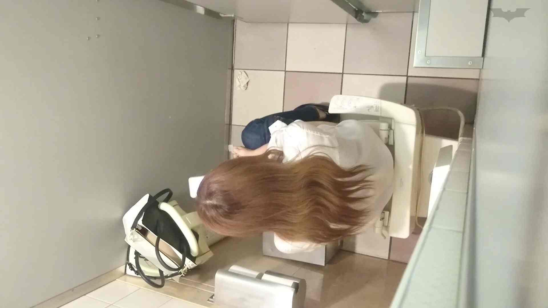 化粧室絵巻 ショッピングモール編 VOL.24 美肌 スケベ動画紹介 109枚 59