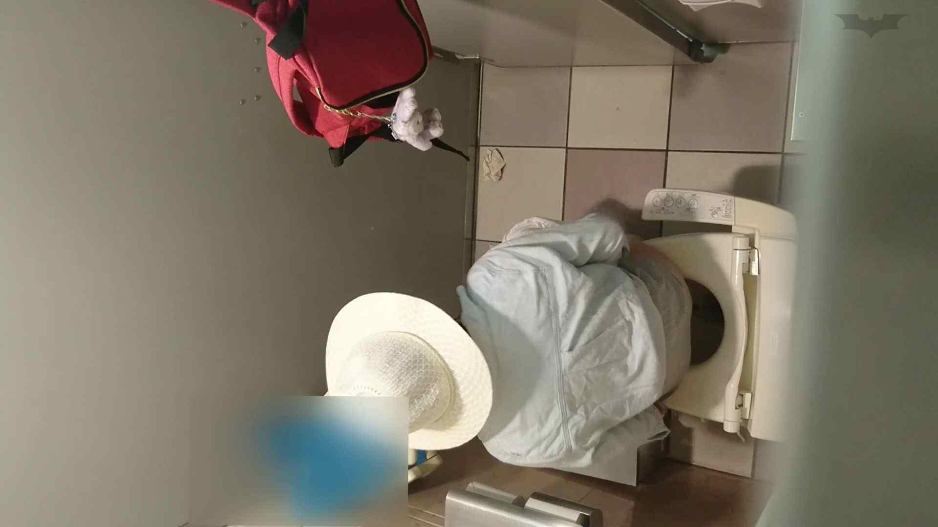 化粧室絵巻 ショッピングモール編 VOL.24 高評価 セックス無修正動画無料 109枚 106