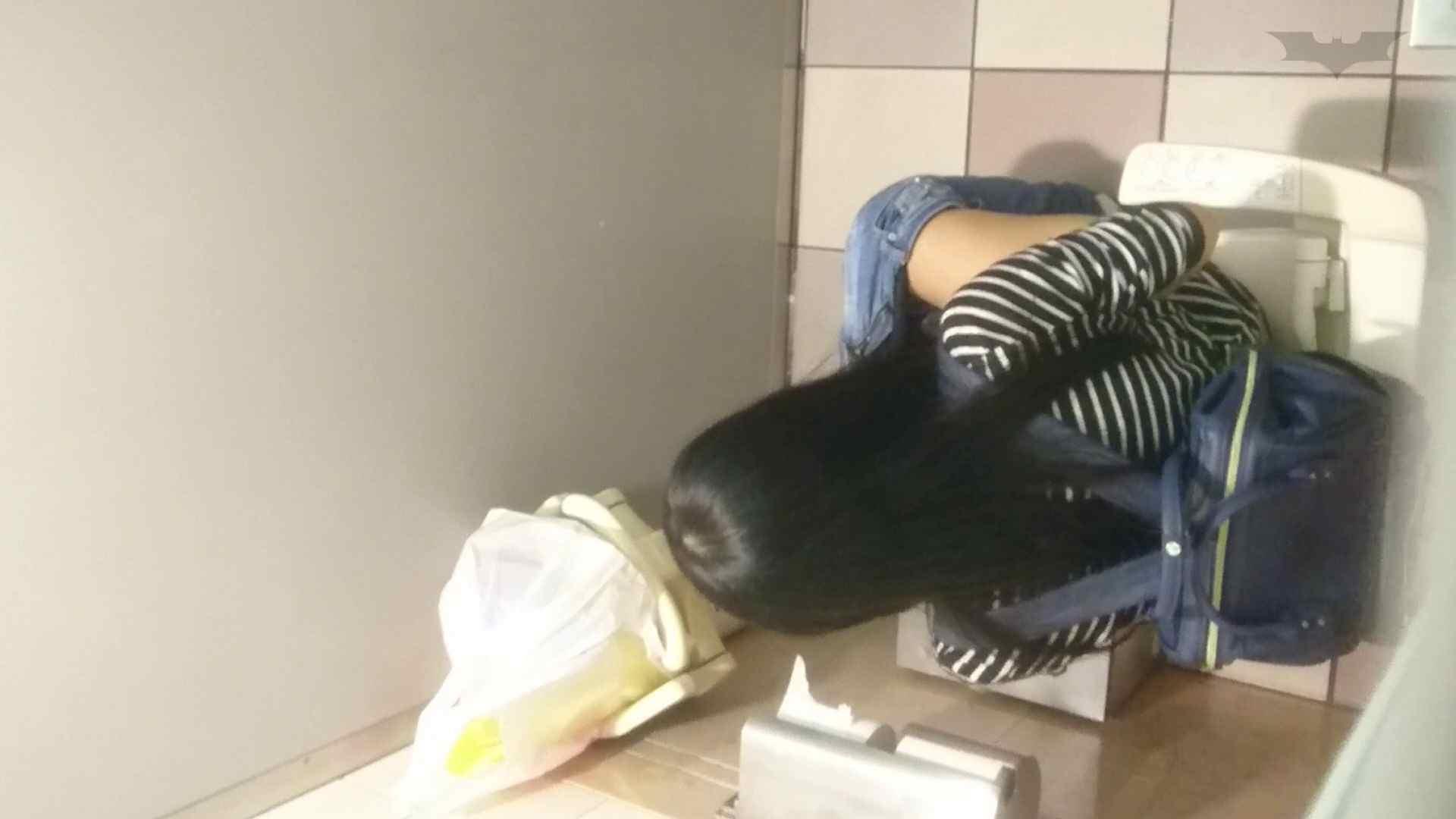 化粧室絵巻 ショッピングモール編 VOL.25 細身体型 ワレメ無修正動画無料 94枚 50