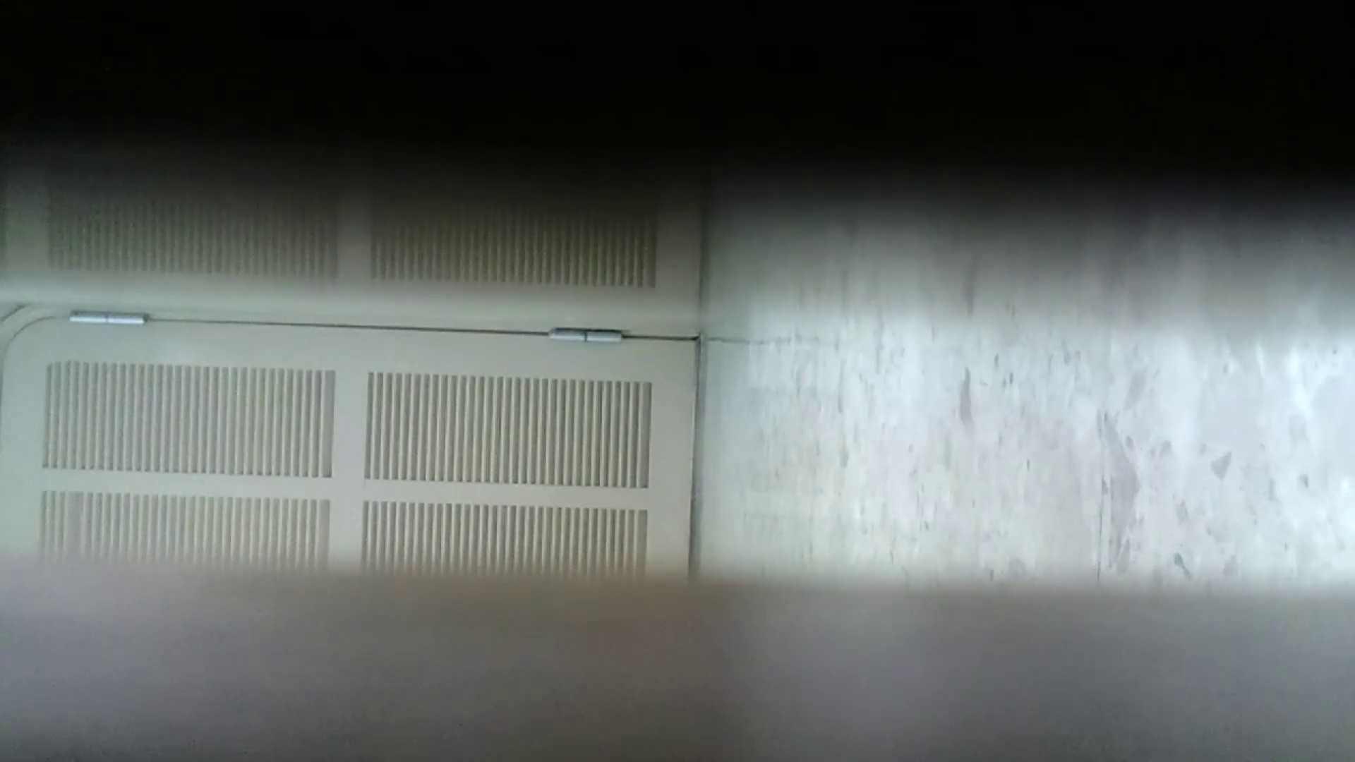 化粧室絵巻 番外編 VOL.15 高評価 性交動画流出 91枚 16