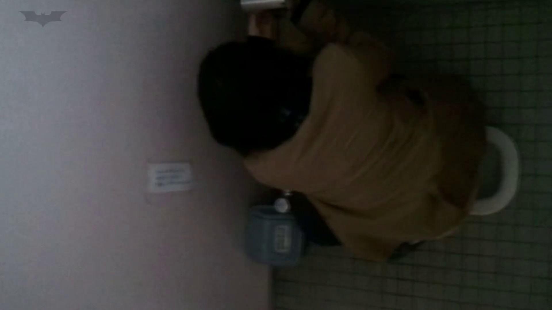 化粧室絵巻 番外編 VOL.24 高評価 スケベ動画紹介 75枚 32