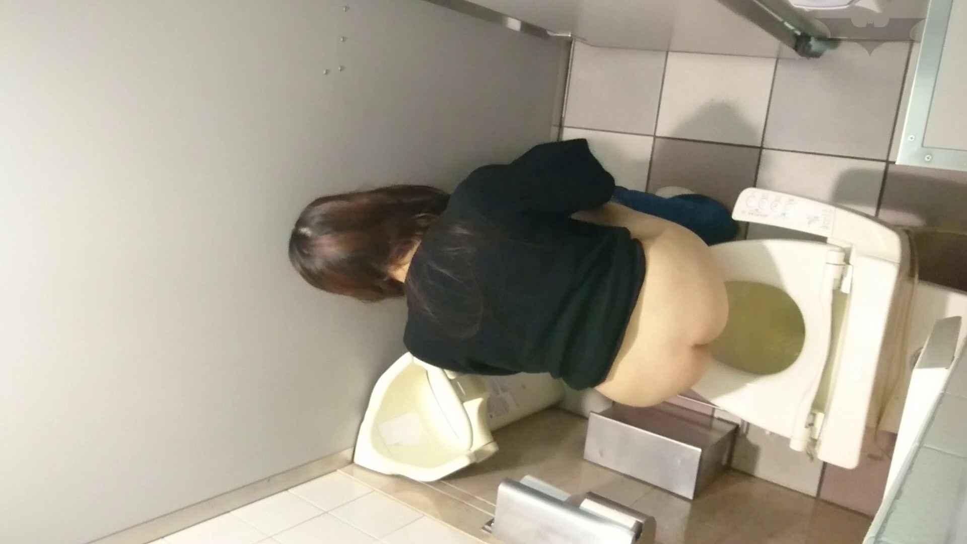 トイレ盗撮|化粧室絵巻 ショッピングモール編 VOL.08|怪盗ジョーカー