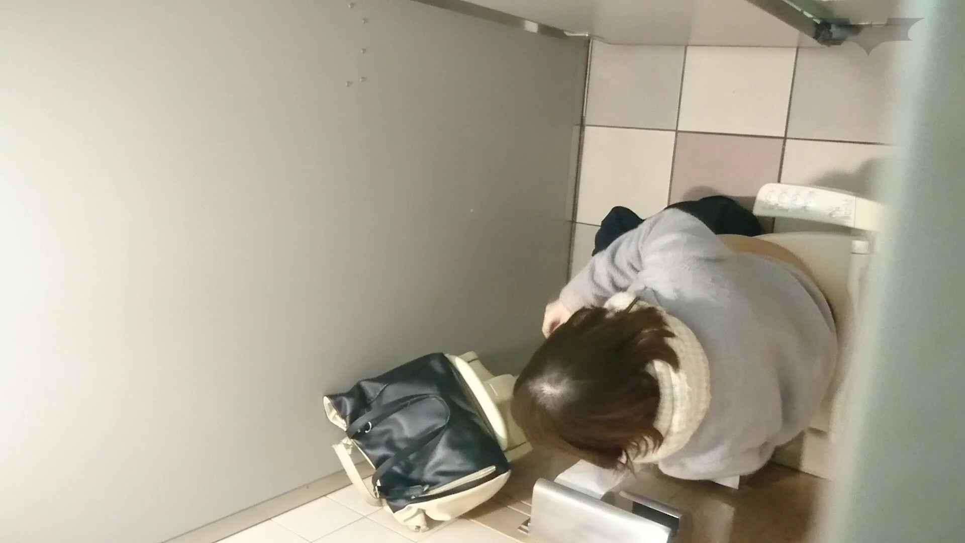 化粧室絵巻 ショッピングモール編 VOL.12 美肌 戯れ無修正画像 89枚 44