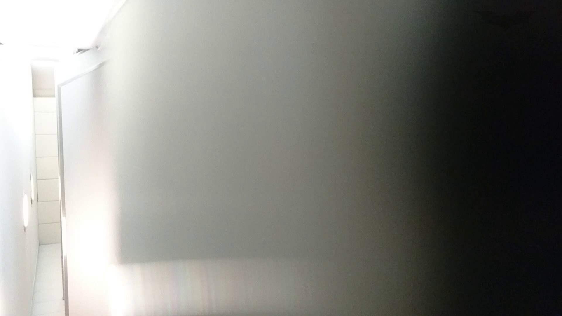 化粧室絵巻 ショッピングモール編 VOL.15 むっちりガール SEX無修正画像 107枚 15