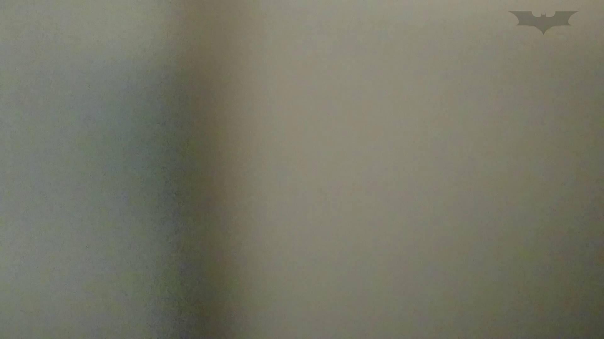 化粧室絵巻 ショッピングモール編 VOL.15 丸見え | 洗面所のぞき  107枚 81