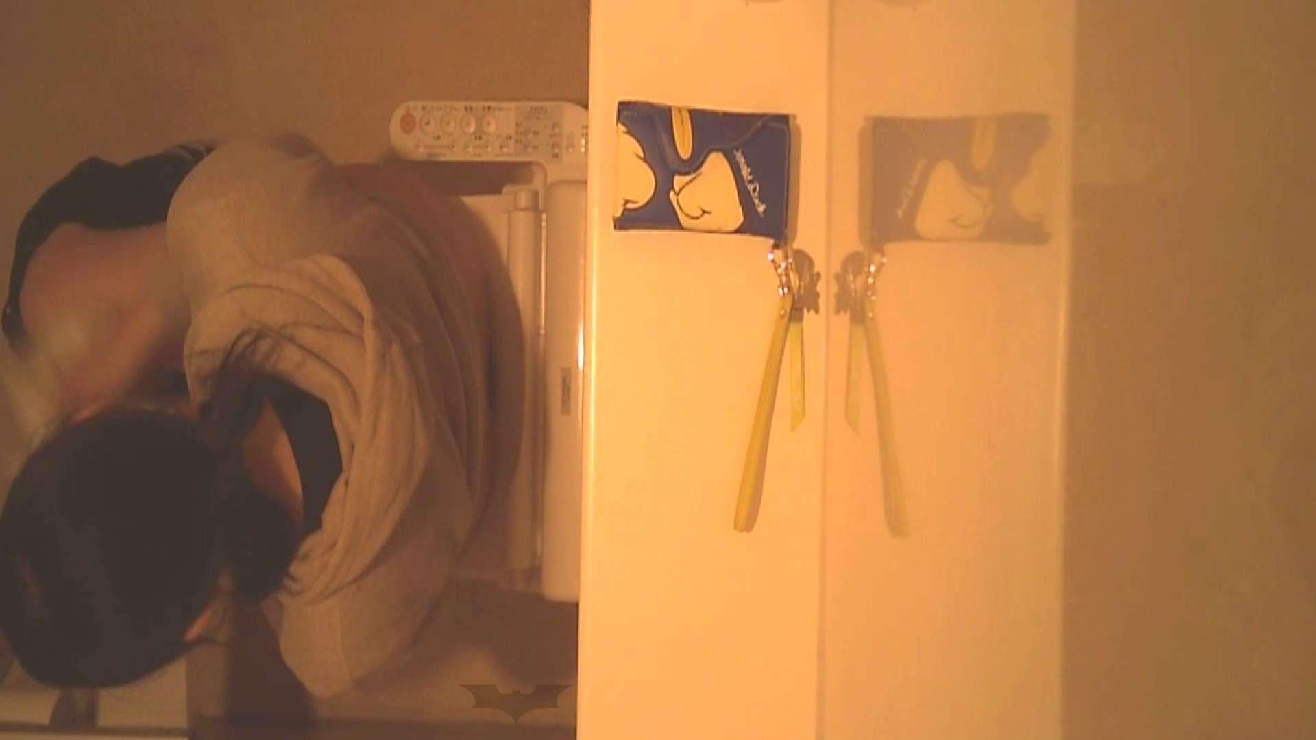 潜入!!全国女子洗面所盗撮 Vol.07 ギャル達 おめこ無修正動画無料 82枚 10