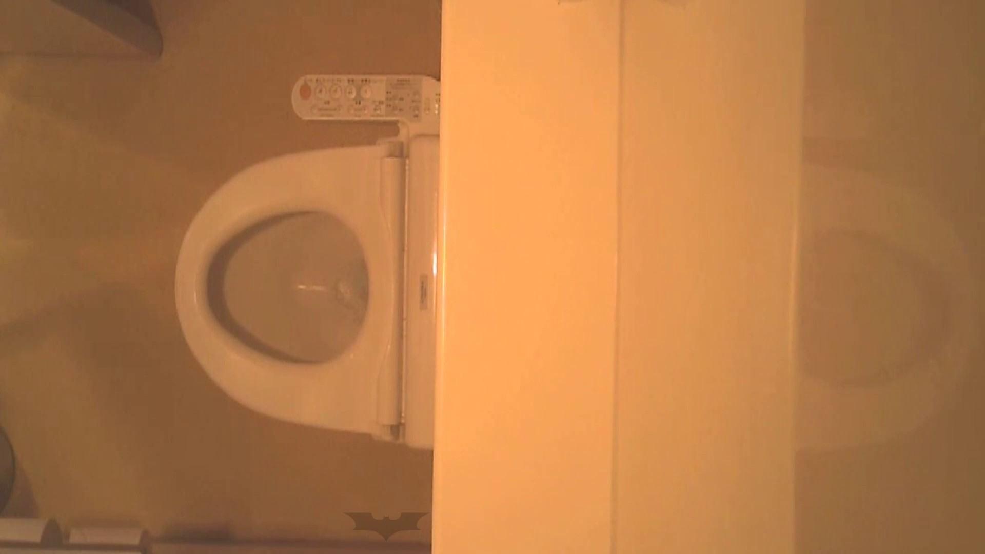 潜入!!全国女子洗面所盗撮 Vol.07 盛合せ AV無料動画キャプチャ 82枚 27