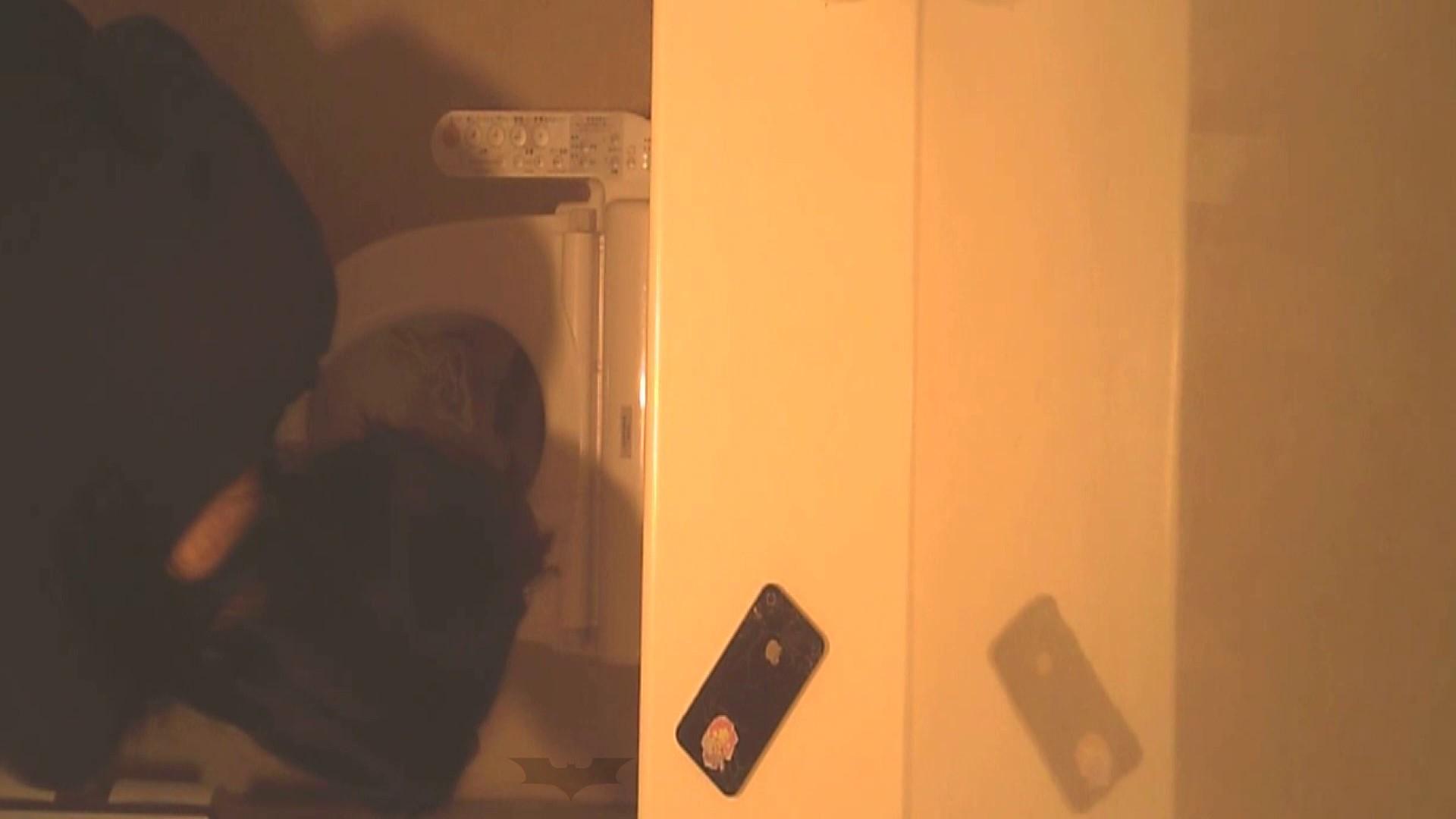 潜入!!全国女子洗面所盗撮 Vol.07 盛合せ AV無料動画キャプチャ 82枚 43