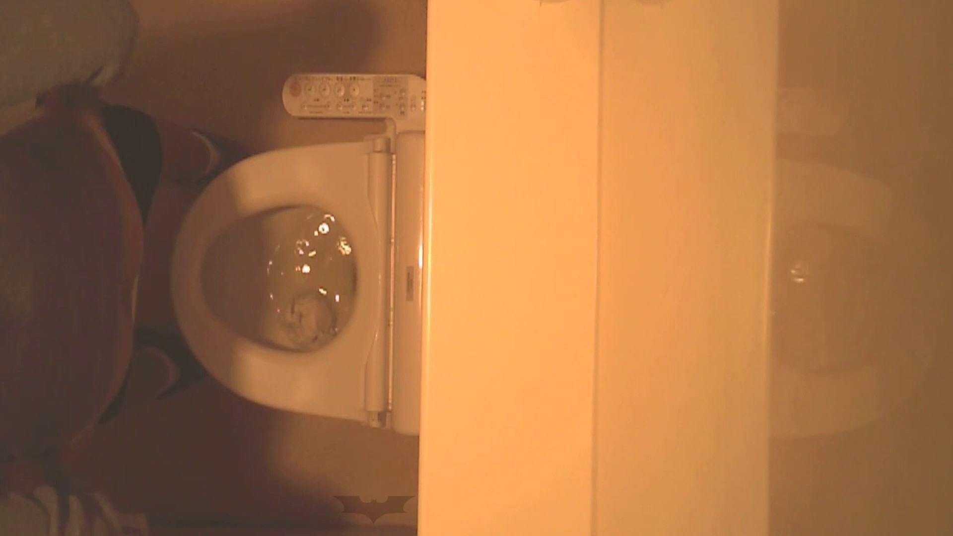 潜入!!全国女子洗面所盗撮 Vol.07 ギャル達 おめこ無修正動画無料 82枚 58