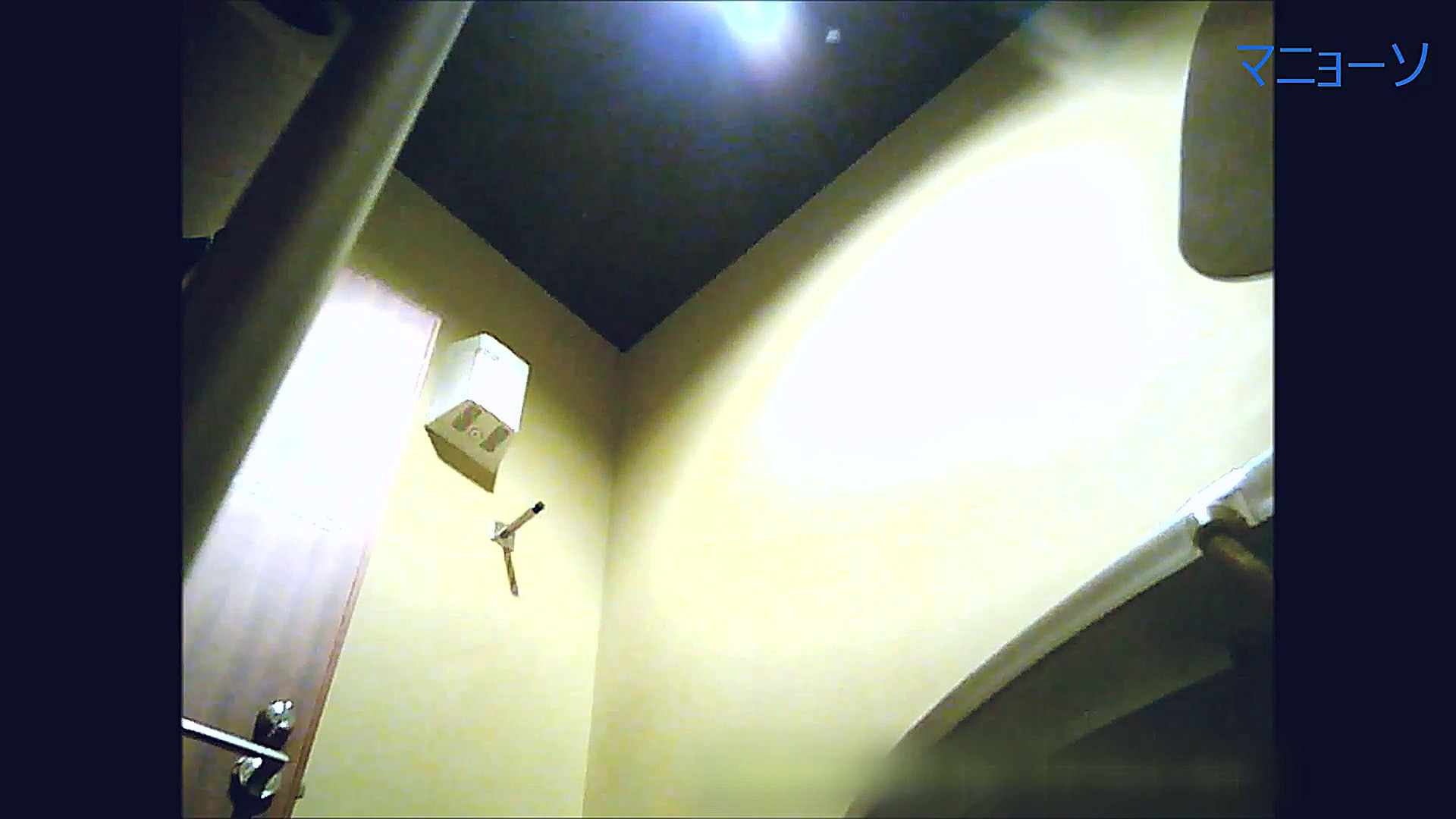 トイレでひと肌脱いでもらいました (JD編)Vol.07 お姉さんのSEX オマンコ動画キャプチャ 104枚 39