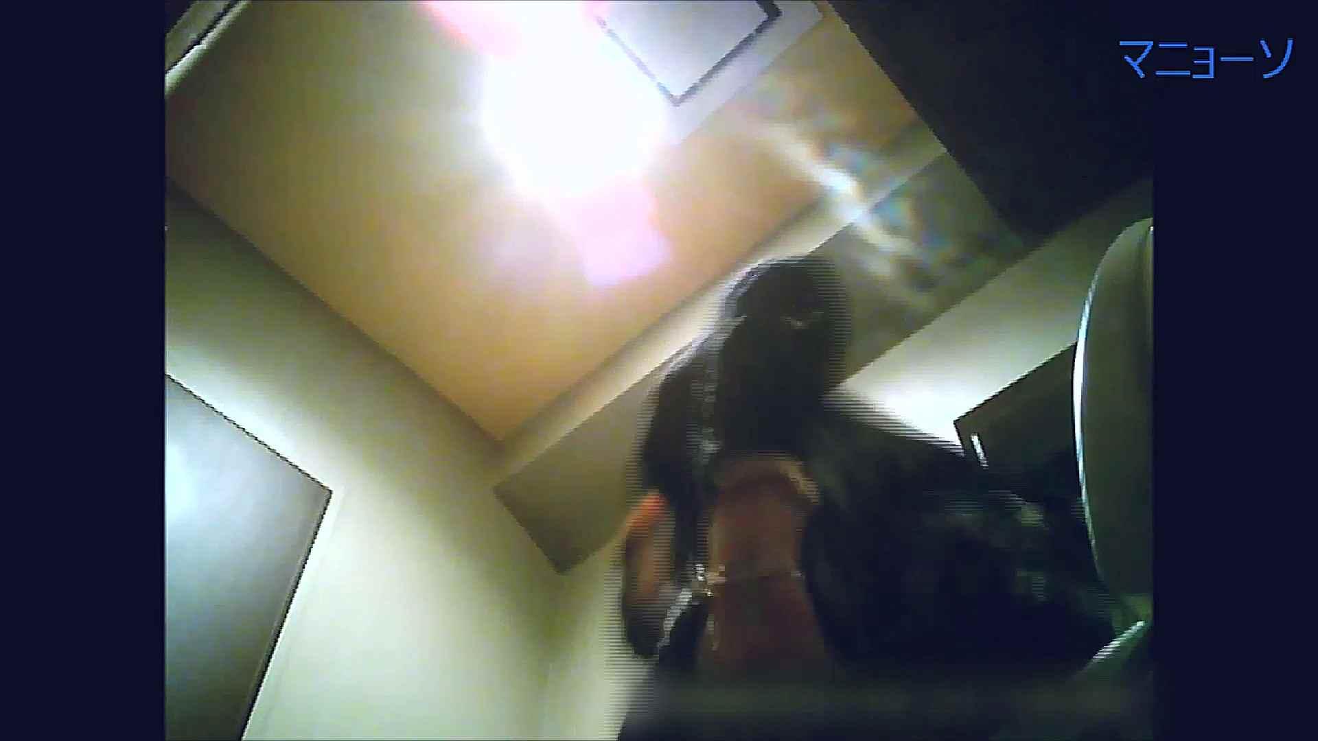 トイレでひと肌脱いでもらいました (OL編)Vol.13 トイレ盗撮 セックス画像 81枚 6