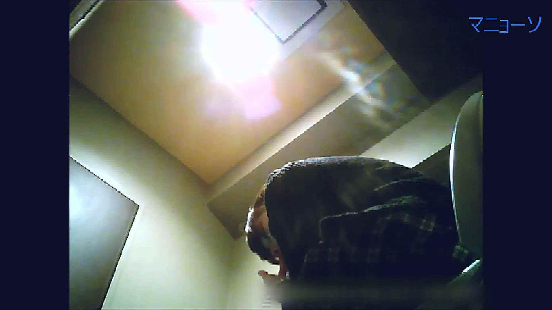 トイレでひと肌脱いでもらいました (OL編)Vol.13 お姉さんのSEX ワレメ動画紹介 81枚 10