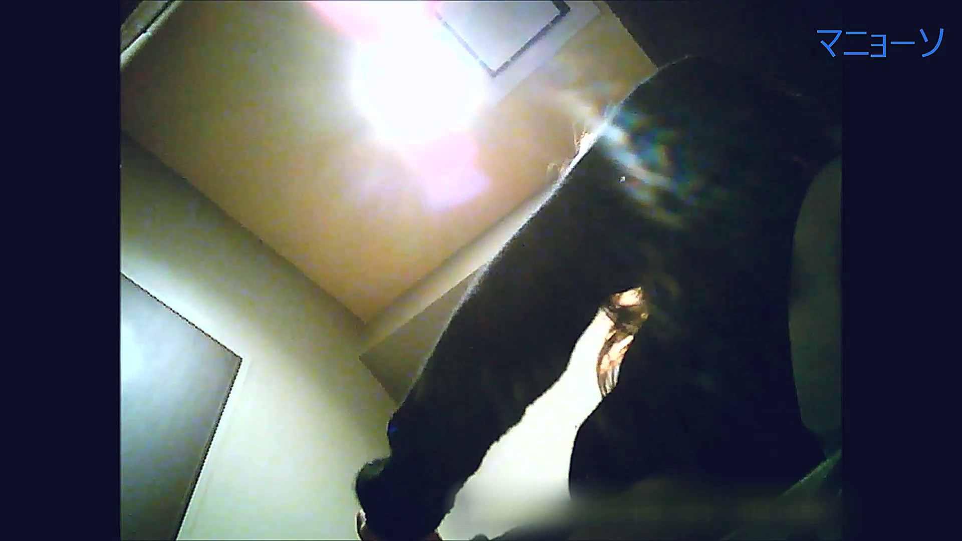 トイレでひと肌脱いでもらいました (OL編)Vol.13 高画質 性交動画流出 81枚 26