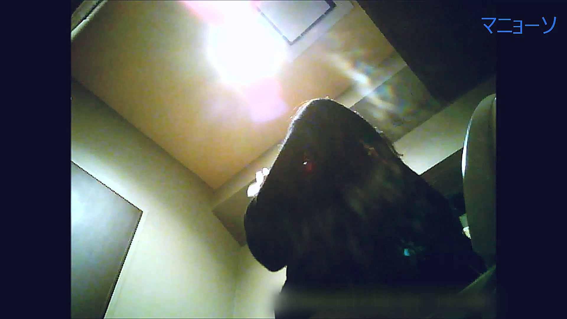 トイレでひと肌脱いでもらいました (OL編)Vol.13 お姉さんのSEX ワレメ動画紹介 81枚 31
