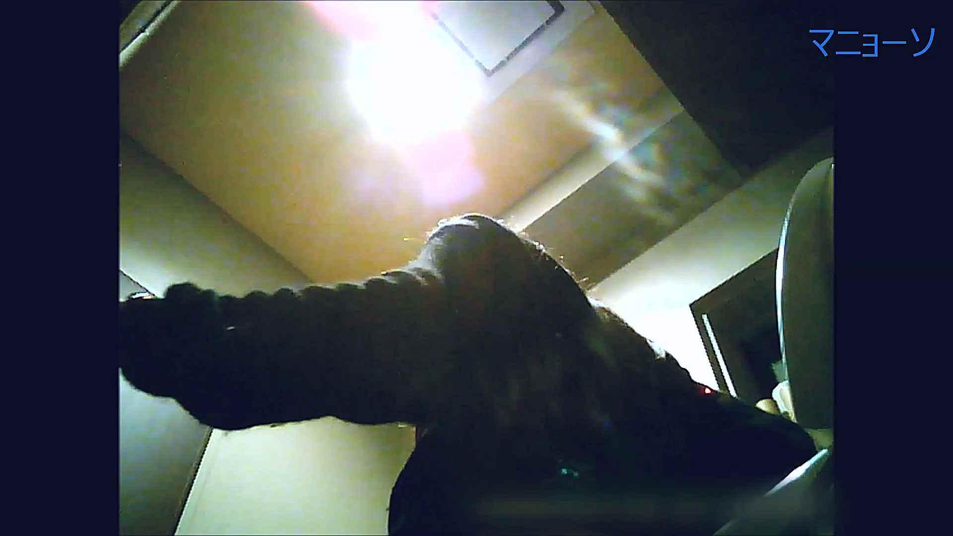 トイレでひと肌脱いでもらいました (OL編)Vol.13 お姉さんのSEX ワレメ動画紹介 81枚 45