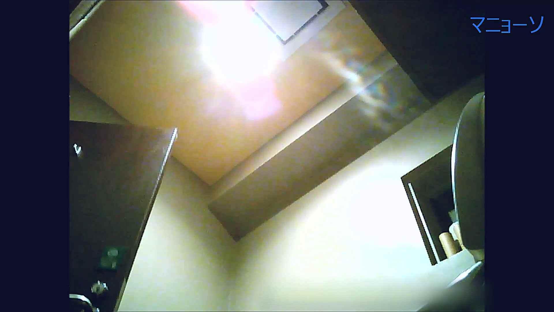 トイレでひと肌脱いでもらいました (OL編)Vol.13 トイレ盗撮 セックス画像 81枚 62