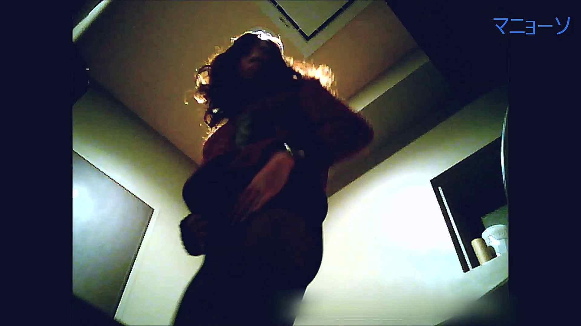 トイレでひと肌脱いでもらいました (OL編)Vol.13 お姉さんのSEX ワレメ動画紹介 81枚 66