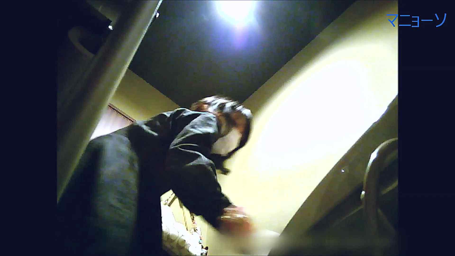 トイレ盗撮|トイレでひと肌脱いでもらいました (OL編)Vol.14|怪盗ジョーカー
