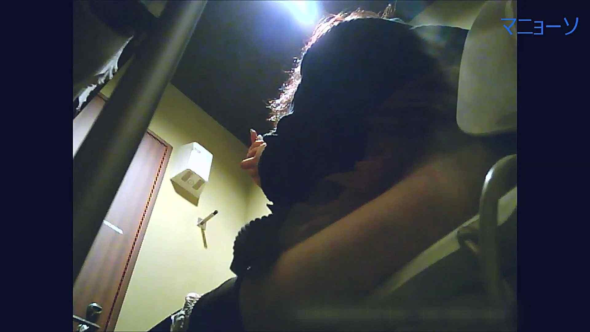 トイレでひと肌脱いでもらいました (OL編)Vol.15 トイレ盗撮 性交動画流出 80枚 27