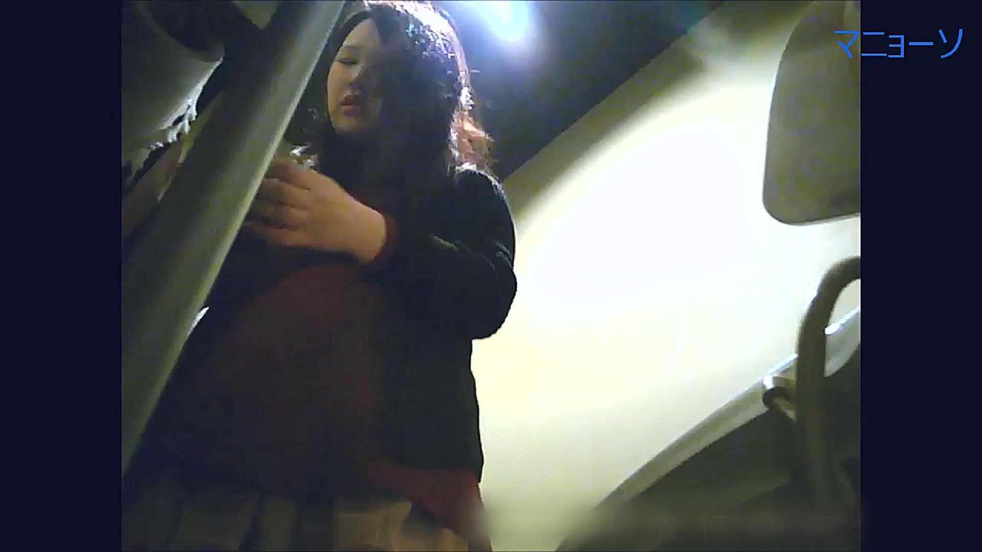 トイレでひと肌脱いでもらいました (OL編)Vol.15 トイレ盗撮 性交動画流出 80枚 41
