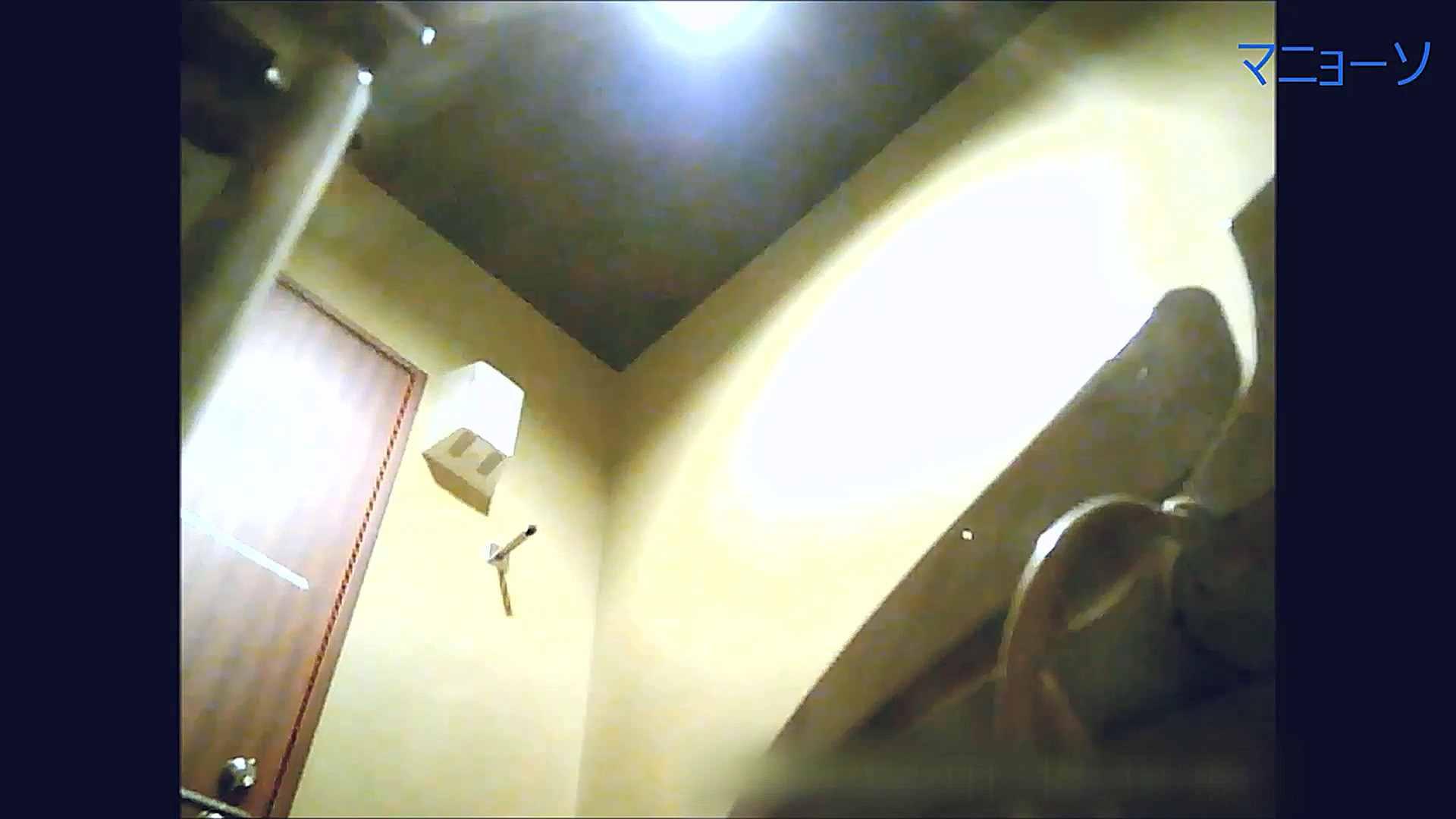 トイレでひと肌脱いでもらいました (OL編)Vol.15 洗面所のぞき すけべAV動画紹介 80枚 75