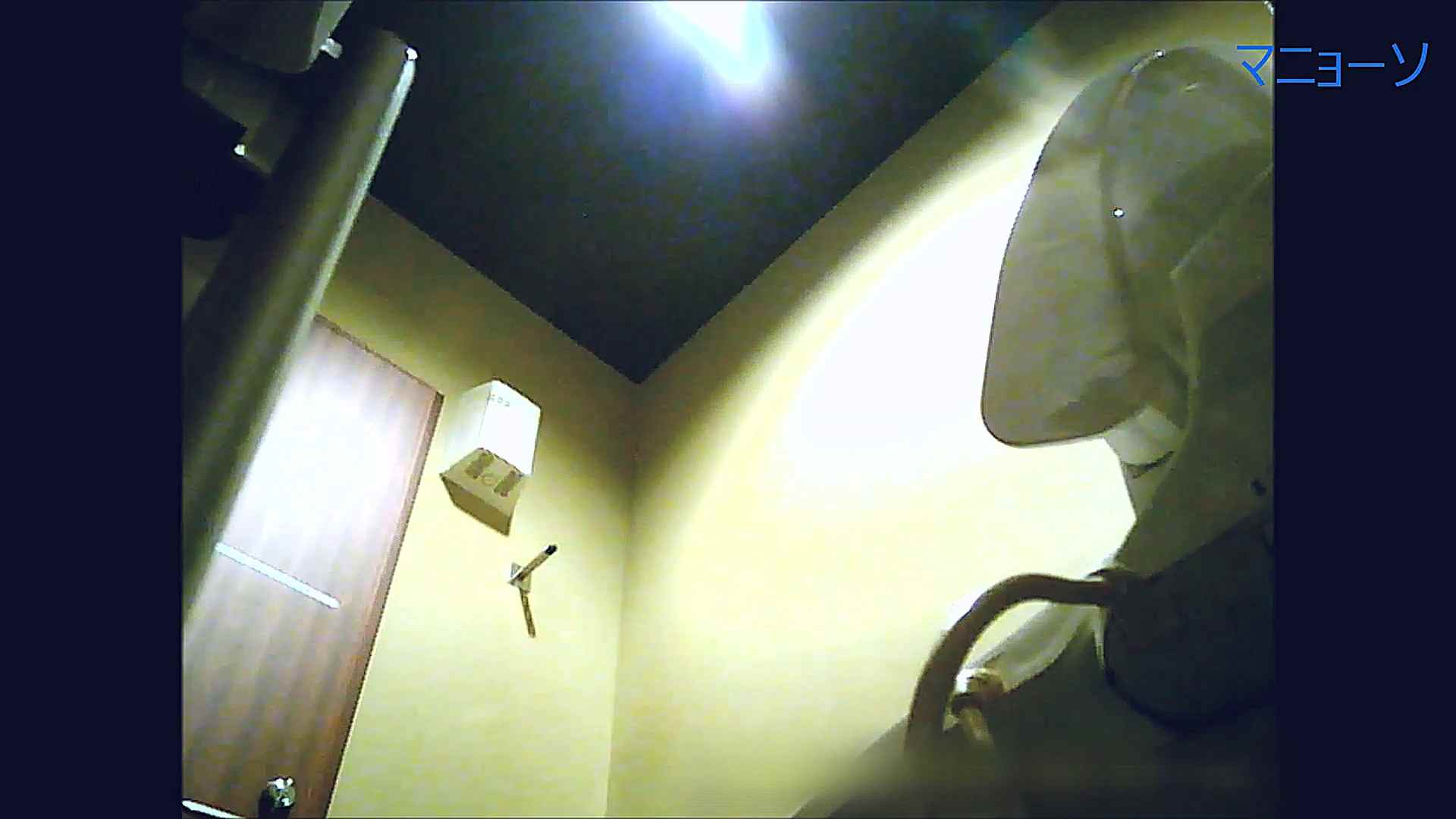 トイレでひと肌脱いでもらいました (番外編)Vol.03 お姉さんのSEX AV動画キャプチャ 108枚 25