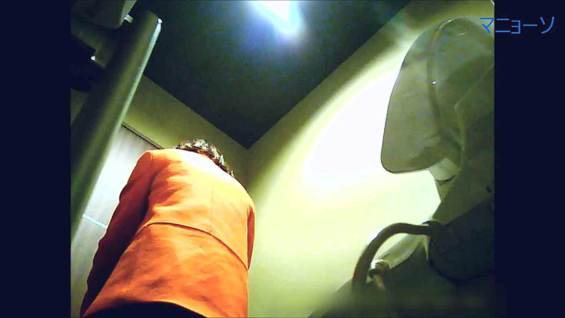 トイレでひと肌脱いでもらいました (番外編)Vol.03 盛合せ エロ無料画像 108枚 94