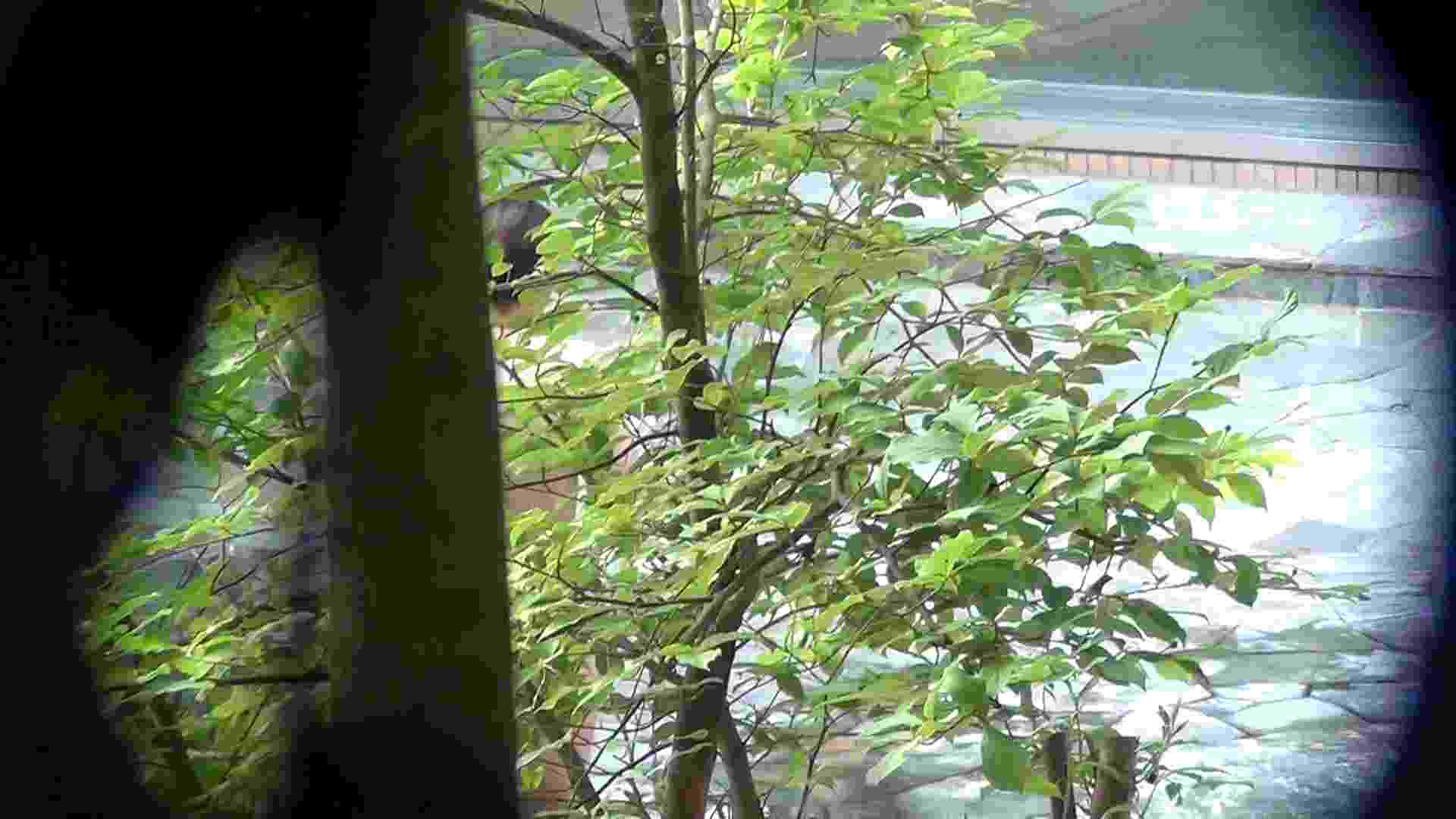 Vol.66 血縁関係三人の裸体鑑賞 タオルが憎い 美乳 SEX無修正画像 90枚 74