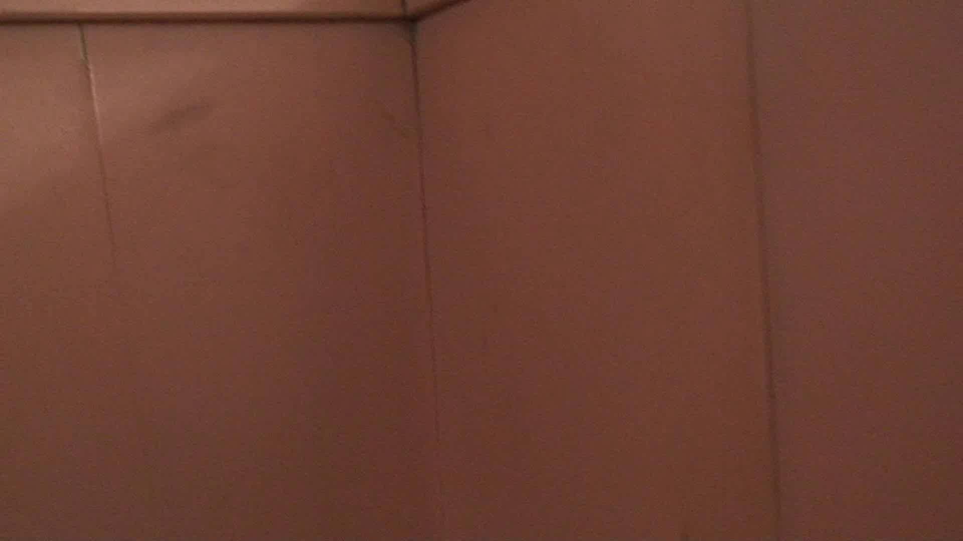 トイレ盗撮|洗面所内潜入!同級生が同級生を盗撮! vol.02|怪盗ジョーカー