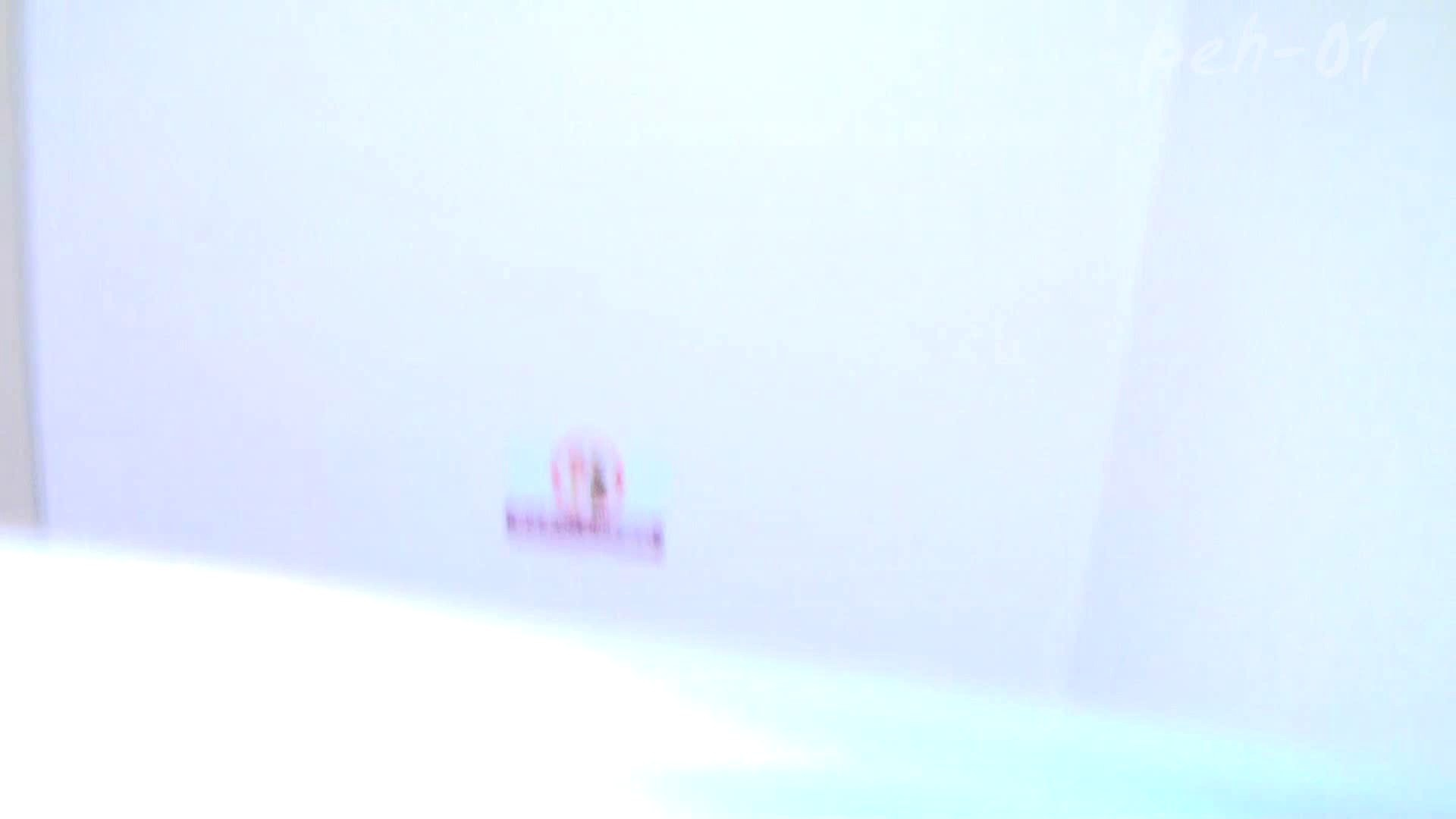 ※100個限定販売 至高下半身盗撮 プレミアム Vol.1 ハイビジョン 洗面所のぞき | 名作殿堂動画  103枚 1
