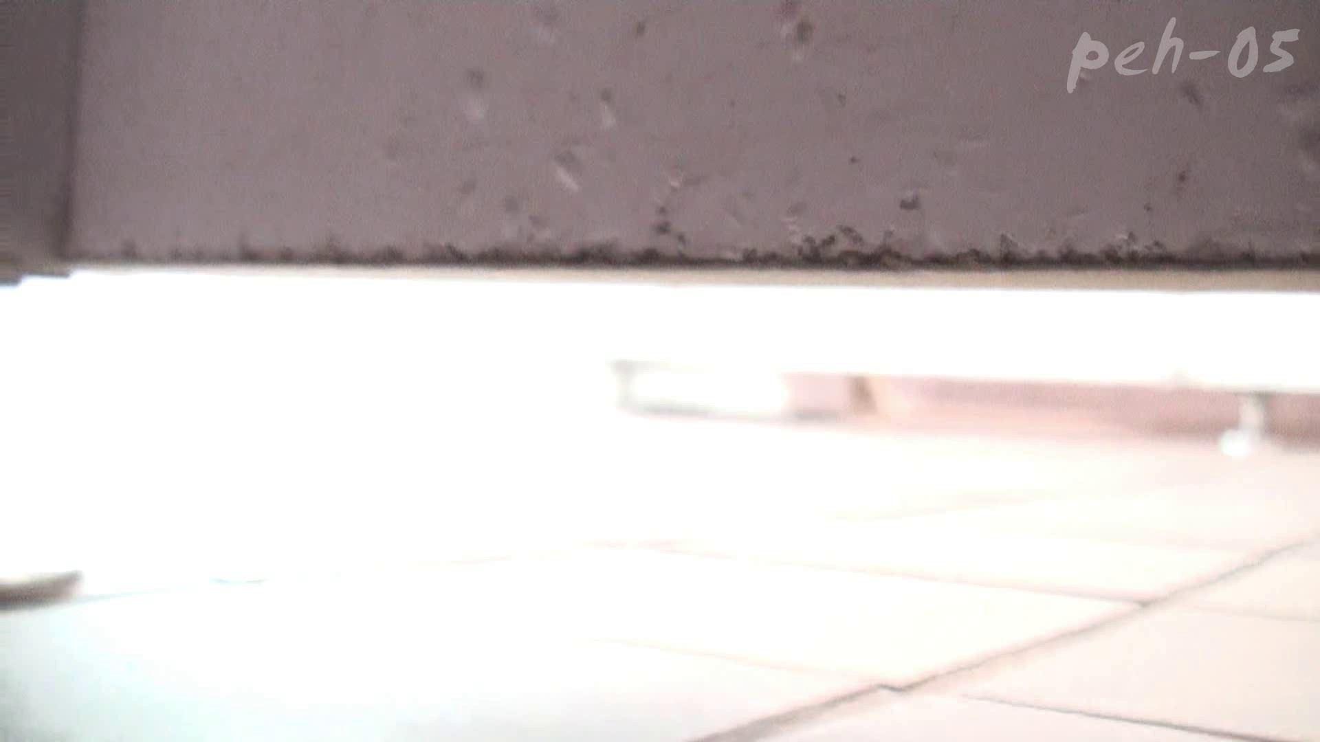 トイレ盗撮 ※100個限定販売 至高下半身盗撮 プレミアム Vol.5 ハイビジョン 怪盗ジョーカー