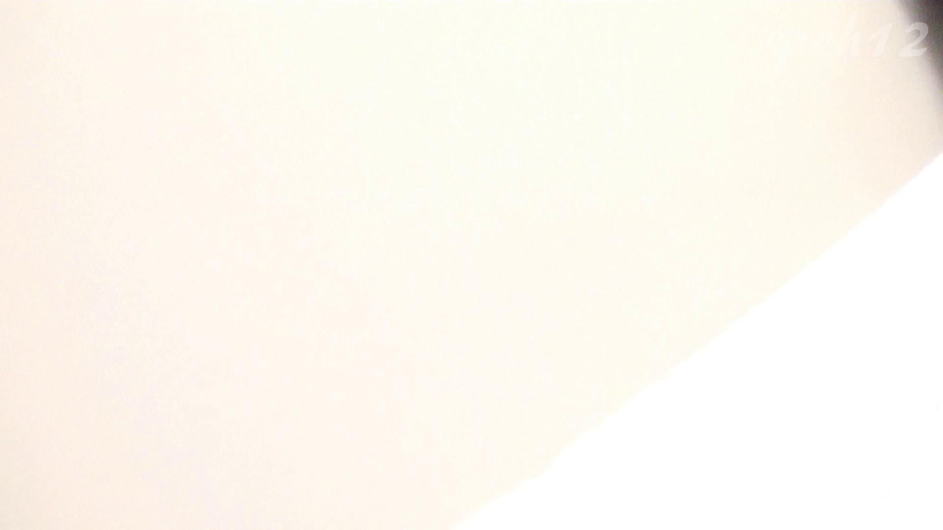 ※100個限定販売 至高下半身盗撮 プレミアム Vol.12 ハイビジョン 盗撮編 | 洗面所のぞき  81枚 81