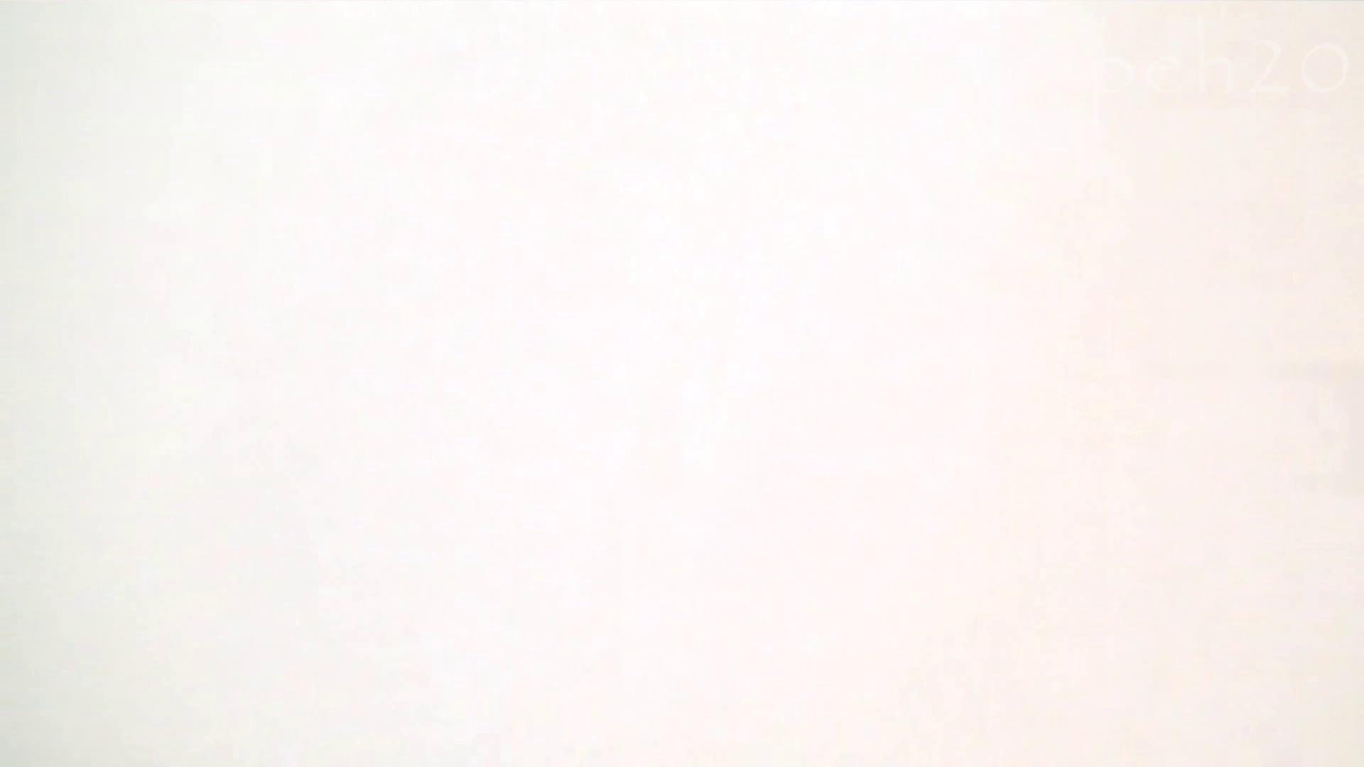 ※100個限定販売 至高下半身盗撮 プレミアム Vol.20 ハイビジョン 盛合せ 濡れ場動画紹介 88枚 82