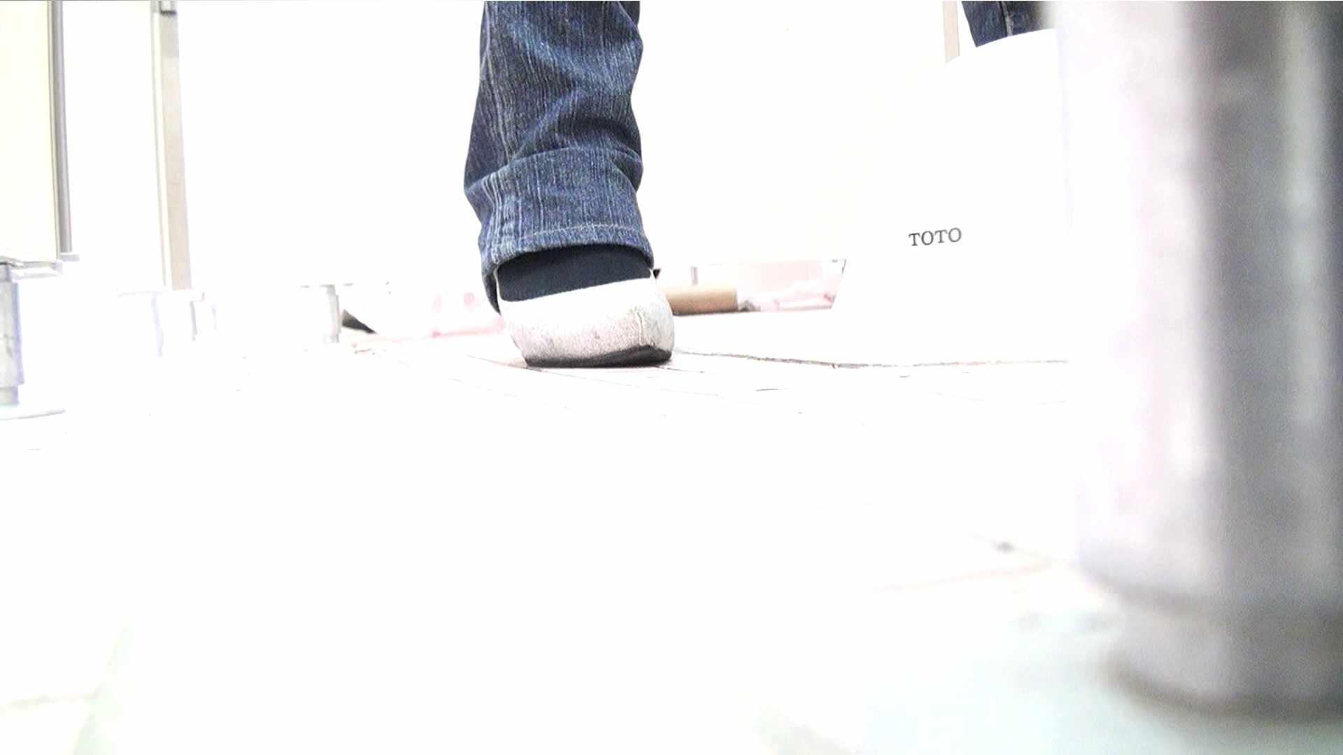 ※100個限定販売 至高下半身盗撮 プレミアム Vol.29 ハイビジョン ギャル達 おまんこ動画流出 94枚 14