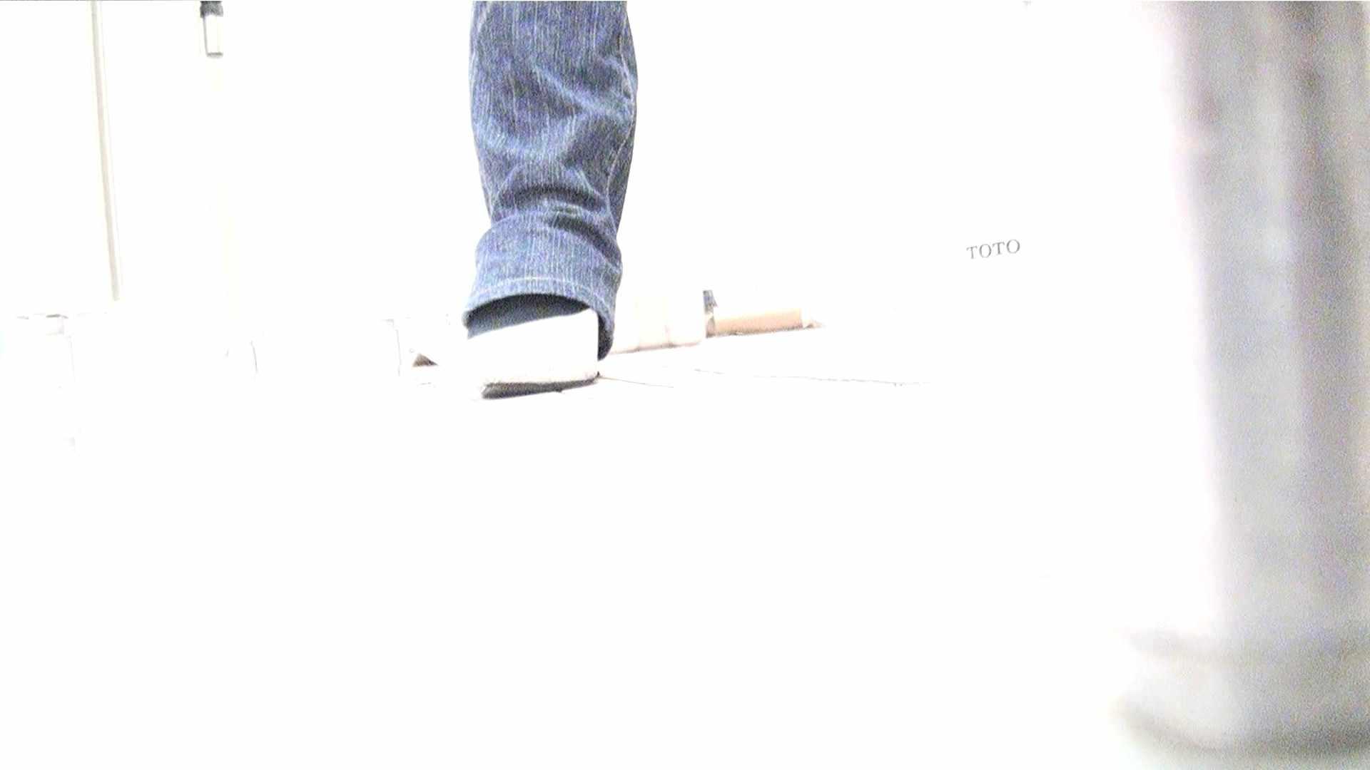 ※100個限定販売 至高下半身盗撮 プレミアム Vol.29 ハイビジョン お姉さんのSEX 性交動画流出 94枚 93