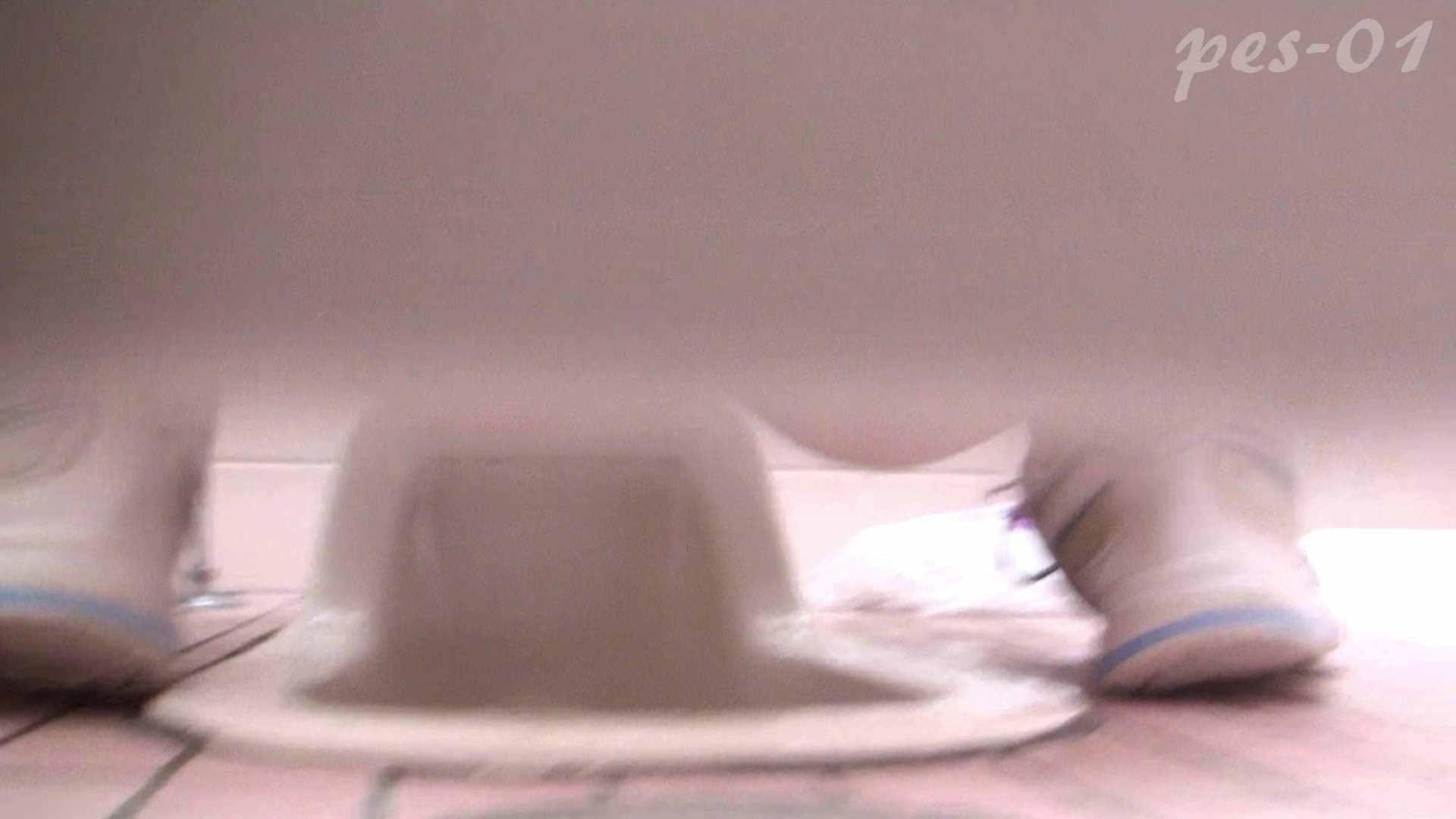 ※100個限定販売 至高下半身盗撮-プレミアム-【体育館編】VOL.1 盗撮編 性交動画流出 93枚 50