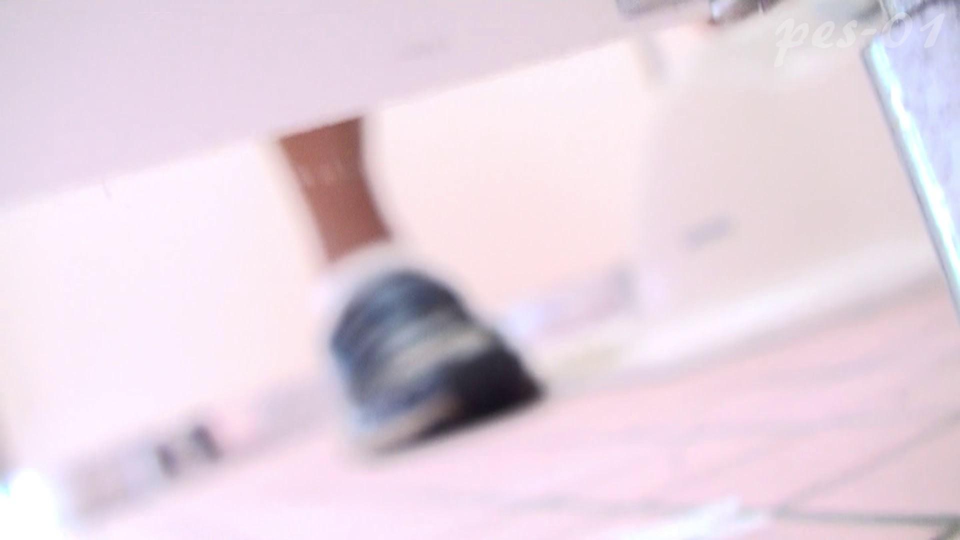 ※100個限定販売 至高下半身盗撮-プレミアム-【体育館編】VOL.1 ギャル達 | 洗面所のぞき  93枚 61
